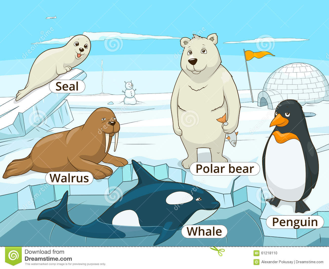 Arctic Animals Educational Game For Kids Vector Stock