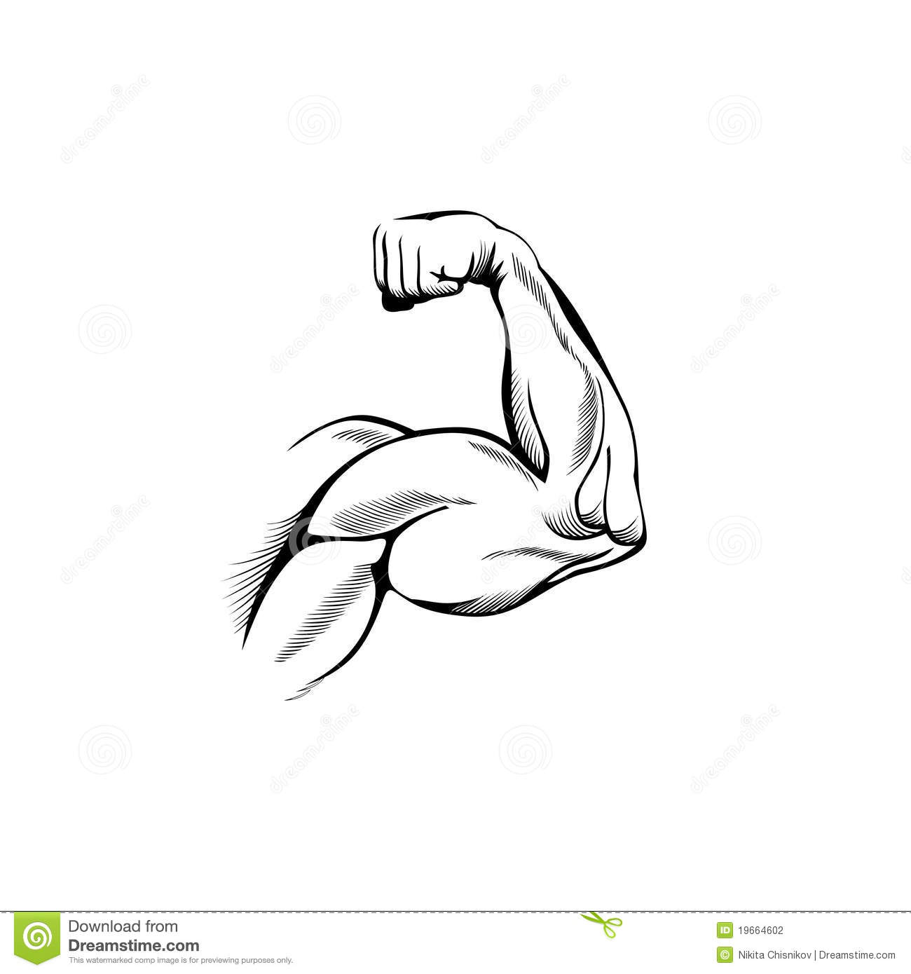 Arm Muscles Stock Photography
