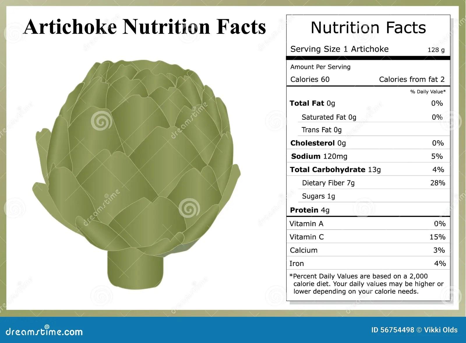 Artichoke Nutrition Facts Stock Vector Image 56754498