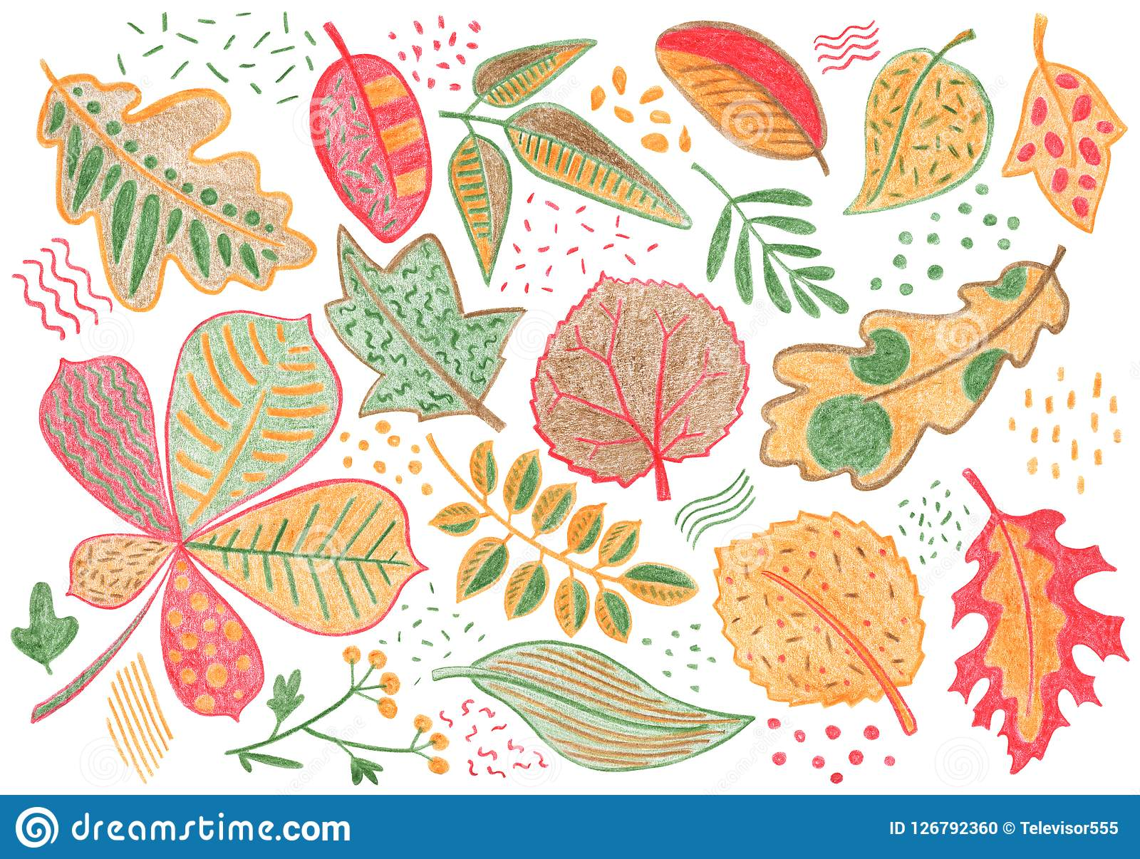 Autumn Leaves By Color Pencil On White Background Falling