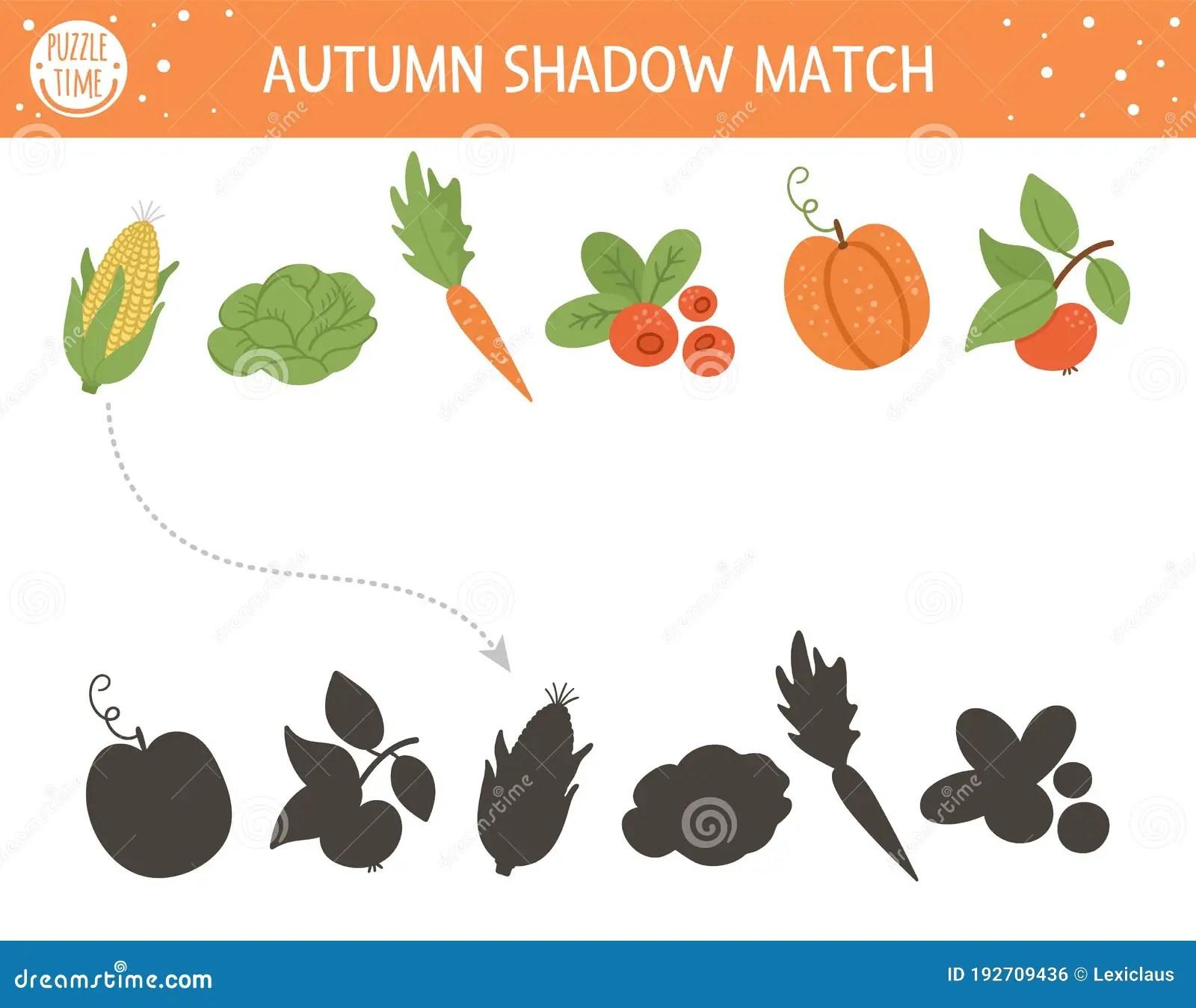 Autumn Shadow Matching Activity For Children Fall Season