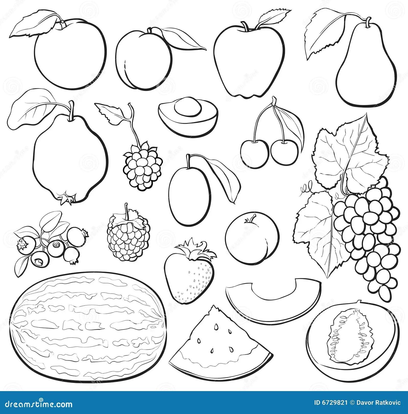 B Amp W Determinado De La Fruta Ilustracion Del Vector