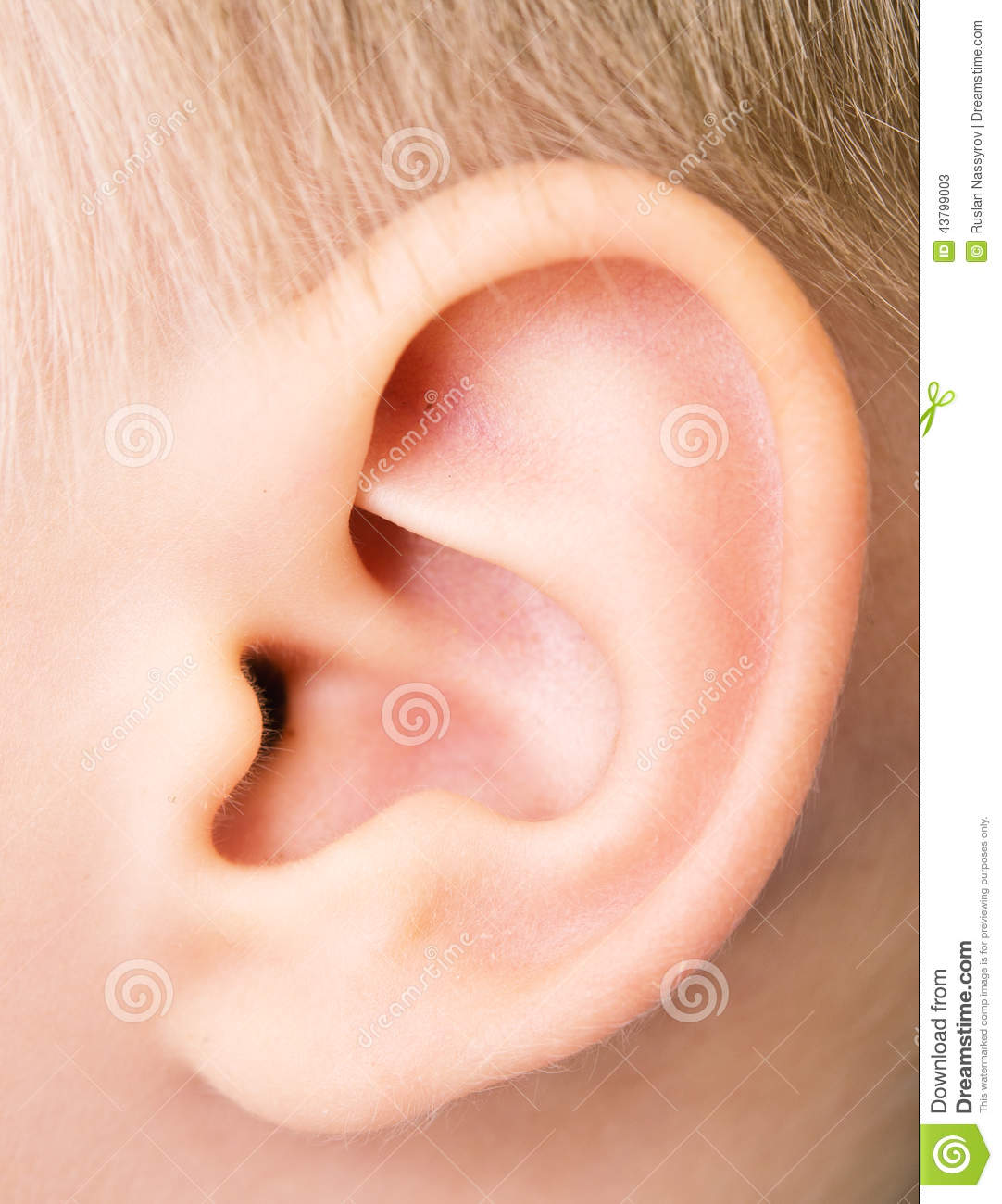 Baby Ear Stock Image Image Of Care White Male Toddler
