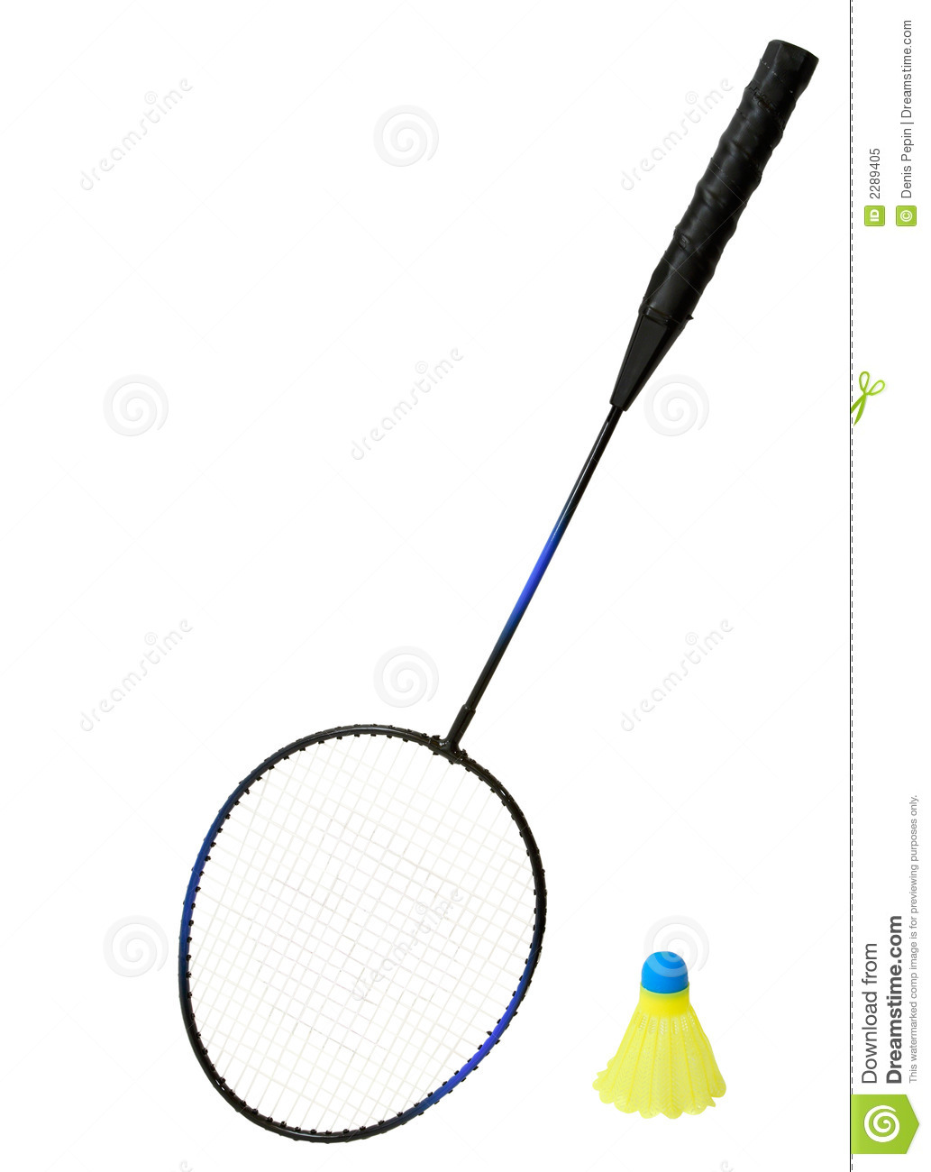 Badminton Racket And A Birstock Image
