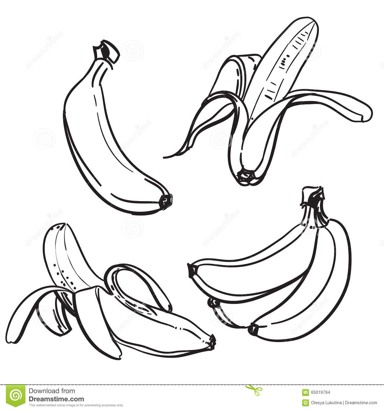 Banana Line Drawing Of Bananas On A White Background
