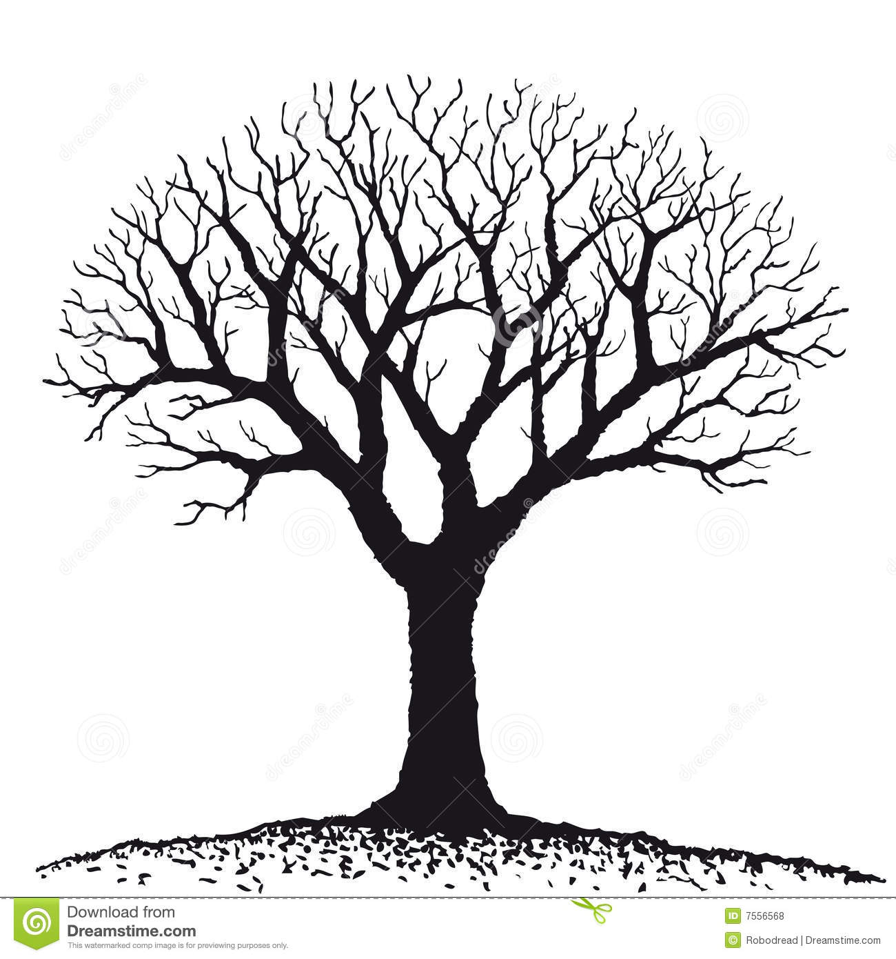 Bare Tree Vector Stock Vector Image Of Line Bark