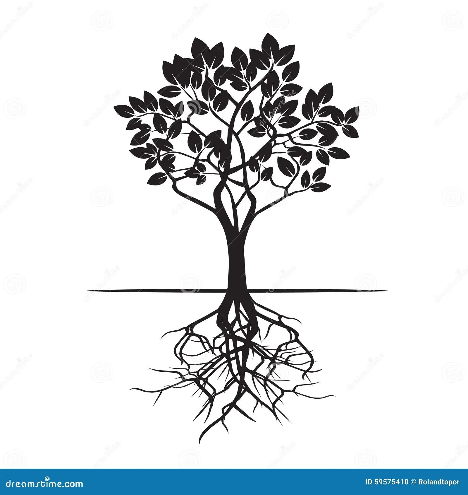 Baum Und Wurzeln Auch Im Corel Abgehobenen Betrag Stock