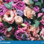 Beautiful Peonies Bouquet With Eucalyptus Stock Photo Image Of Bloom Bunch 139018918
