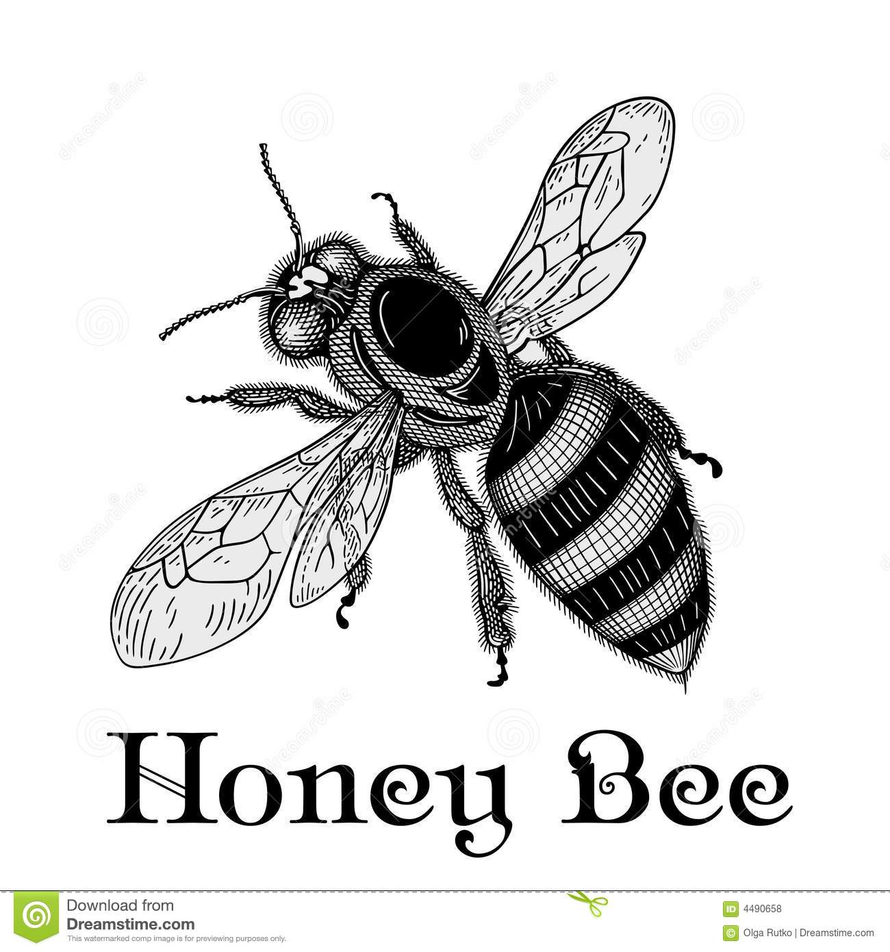 Bee Vector Royalty Free Stock Photos