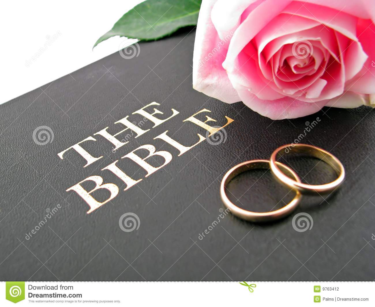 Bible Wedding Rings And Rose Stock Photo Image 9763412