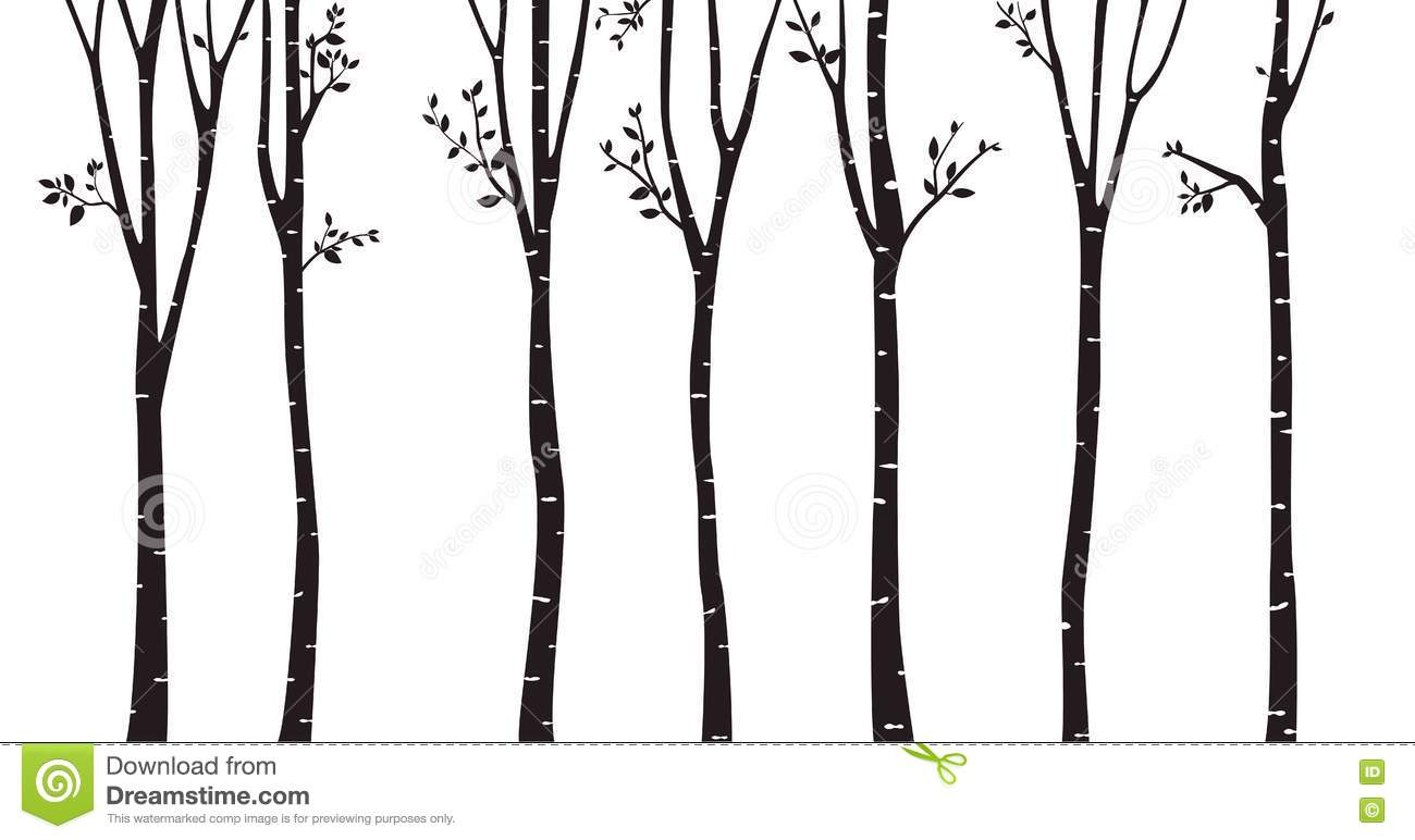 Birch Tree Silhouette Background Stock Vector