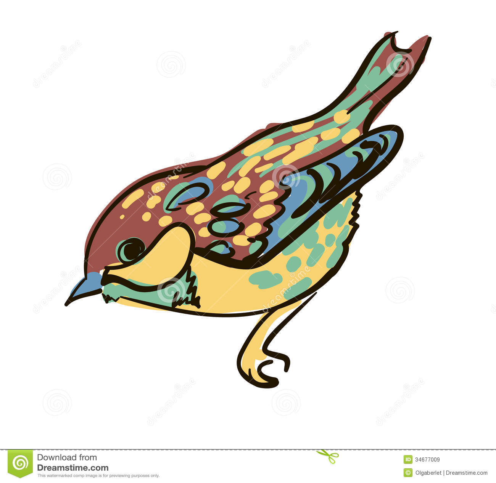 Bird Stock Vector Illustration Of Pigeon Animal Feather