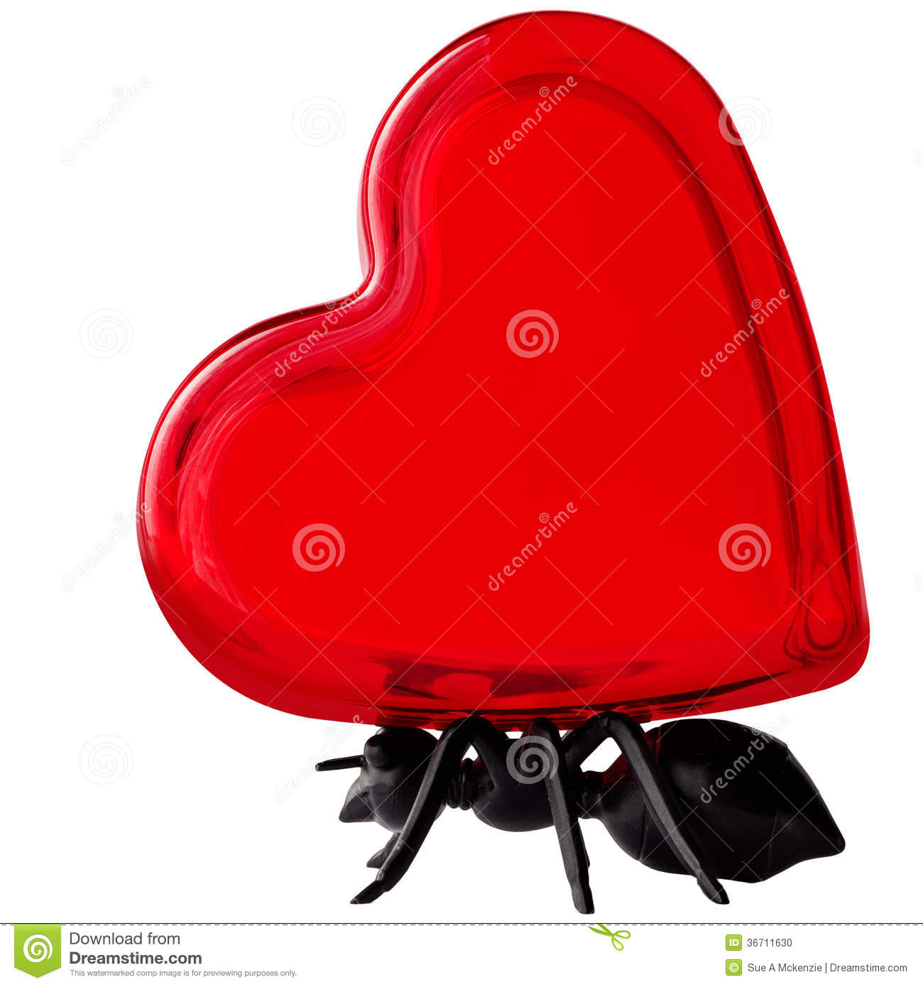 Black Ant Character Carrying Glass Red Valentines Day