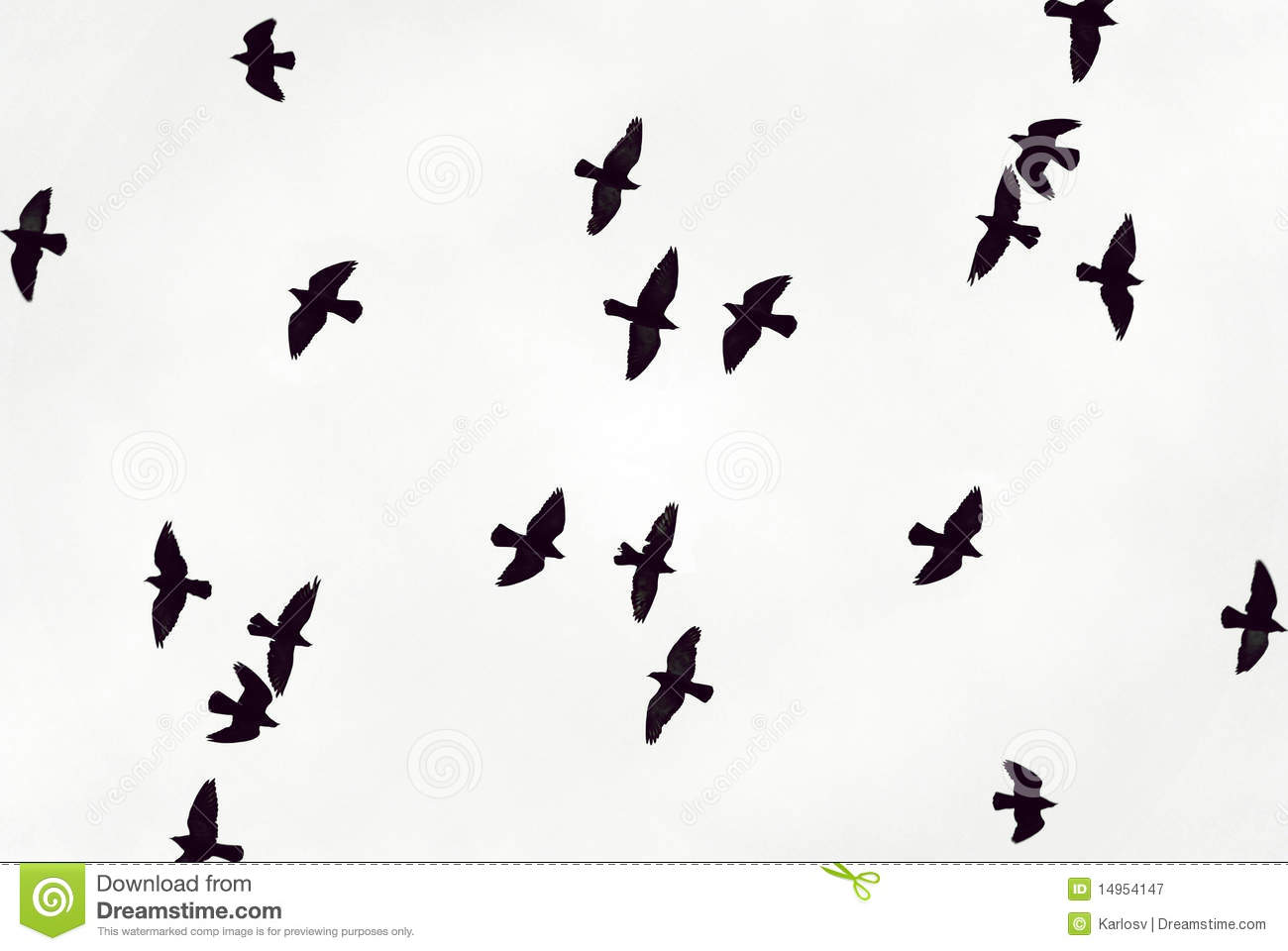 Black Birds Fly In The Sky Stock Image Image Of Abstract