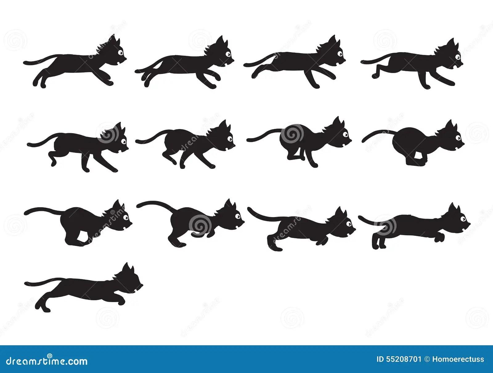 Blackay Cat