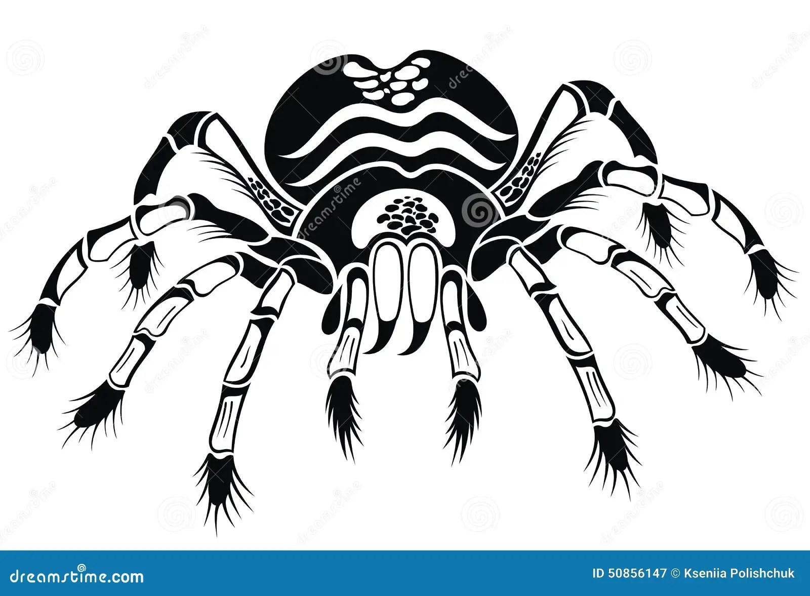 Black Tarantula Tattoo Spider Stock Vector