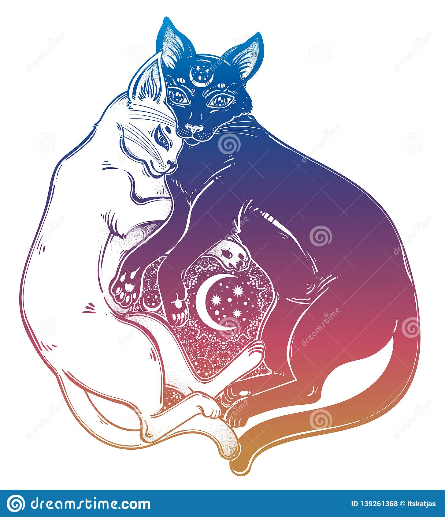 Black And White Cat Dualism Of Day And Night Spiritual