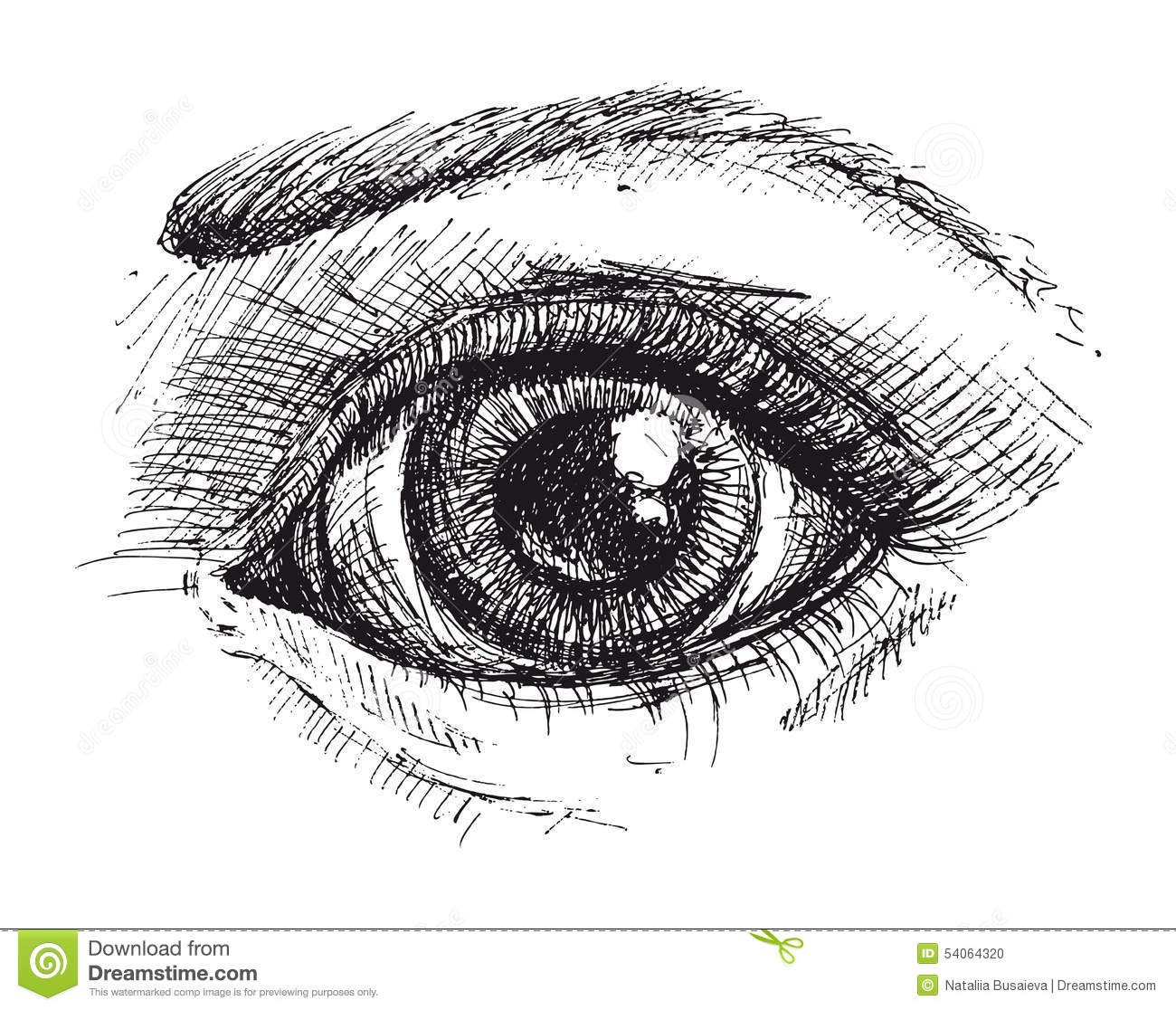 Black And White Drawing Of Eye Stock Vector
