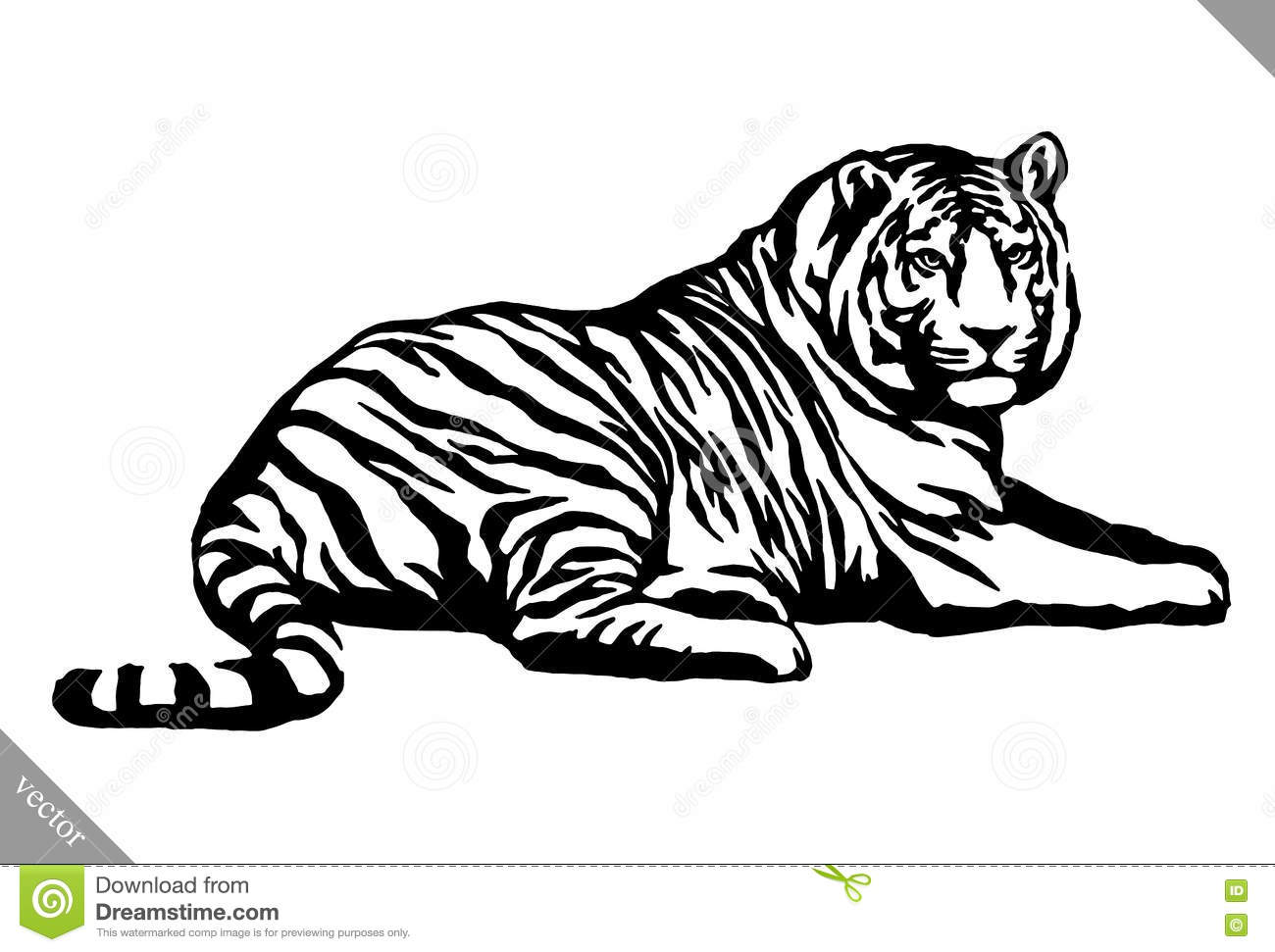 Black And White Ink Draw Tiger Vector Illustration Stock
