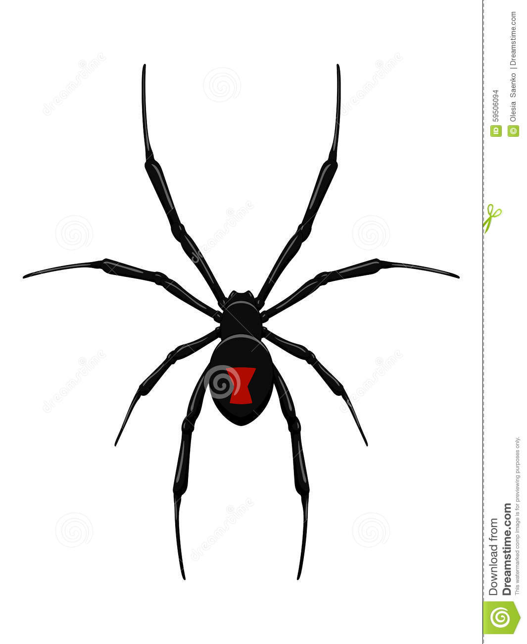 Black Widow Spider Stock Vector Illustration Of Design
