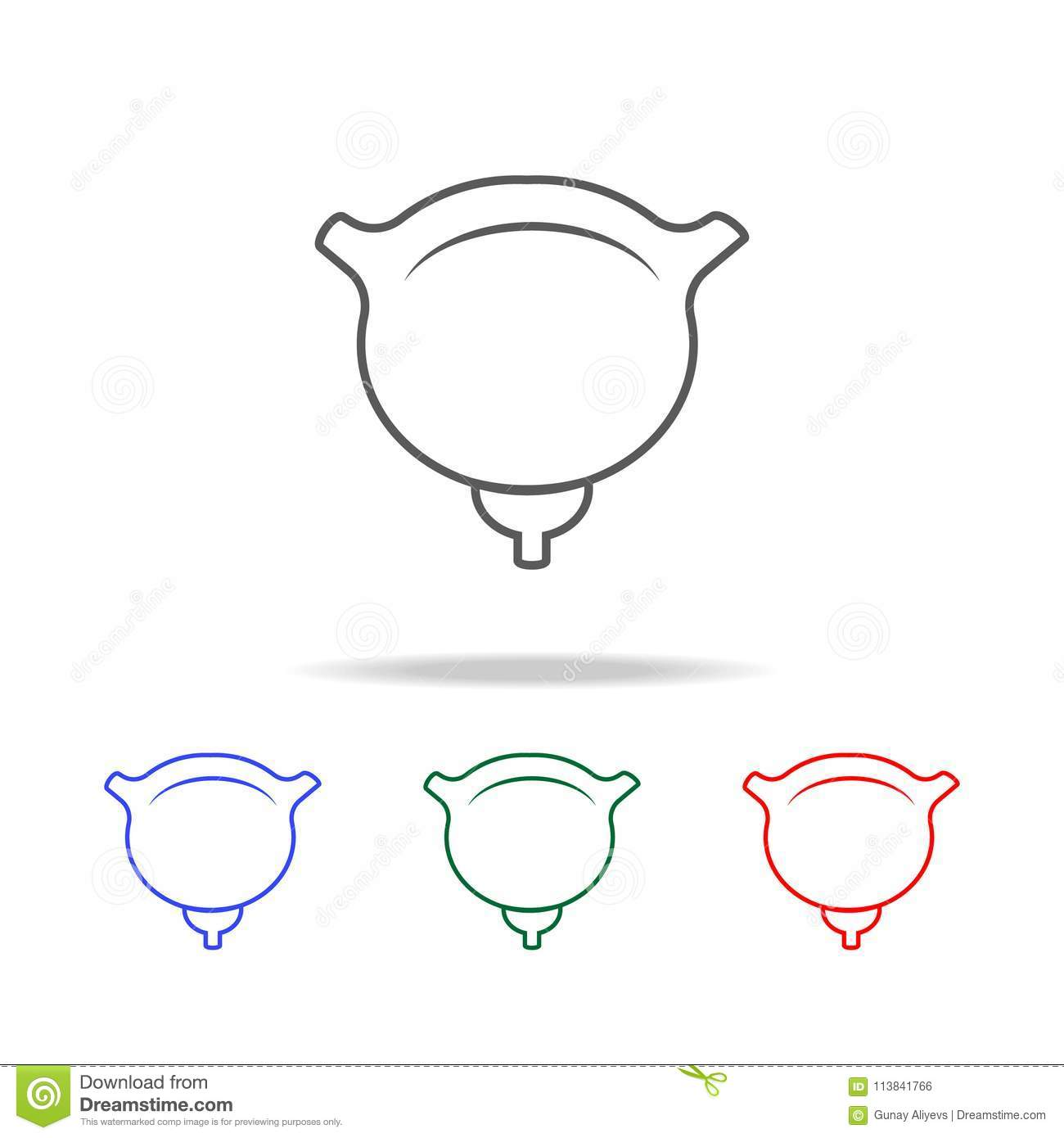 Female Urinary System Stock Illustration
