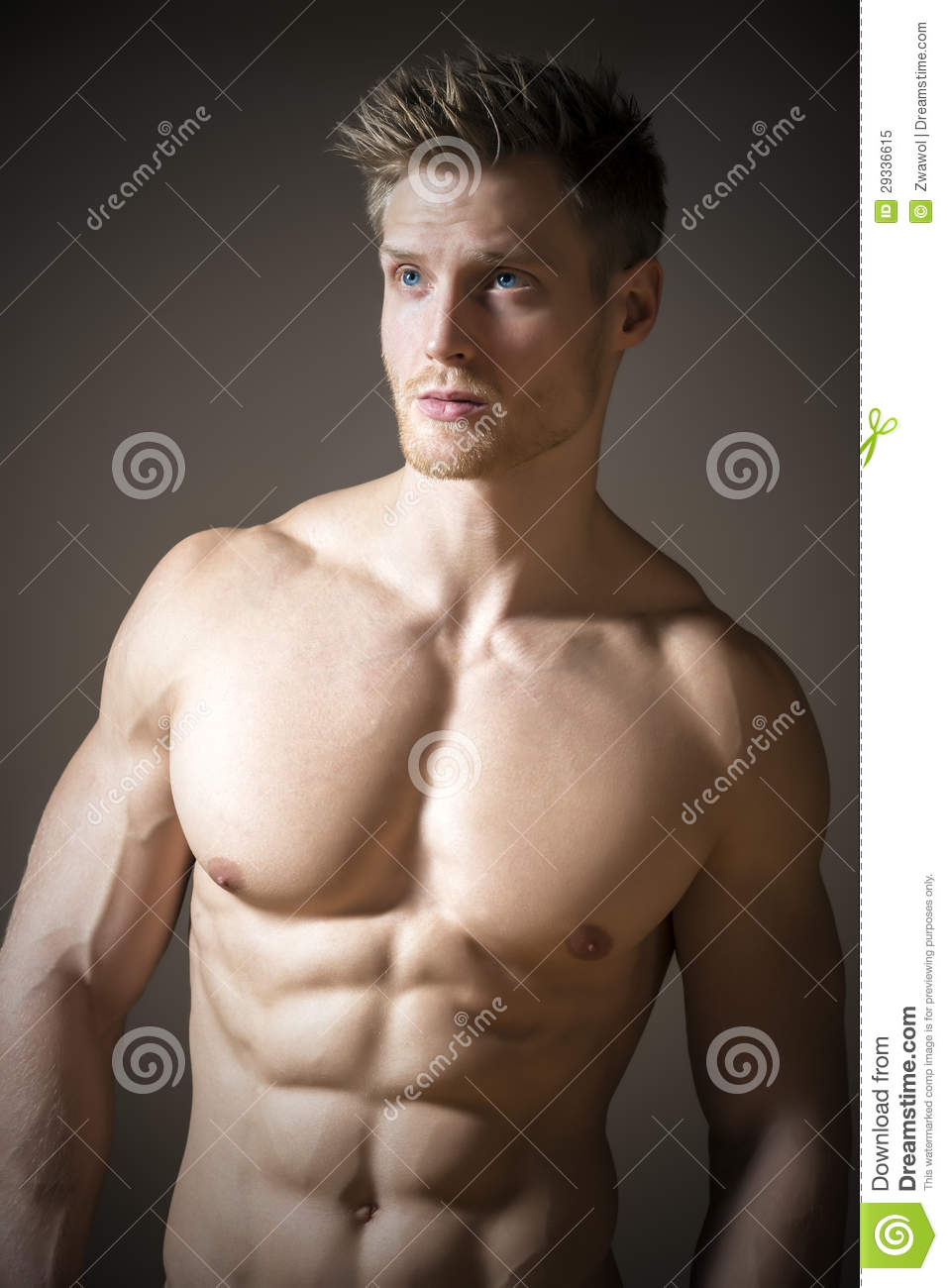 Blond Athletic Man Royalty Free Stock Photo Image 29336615