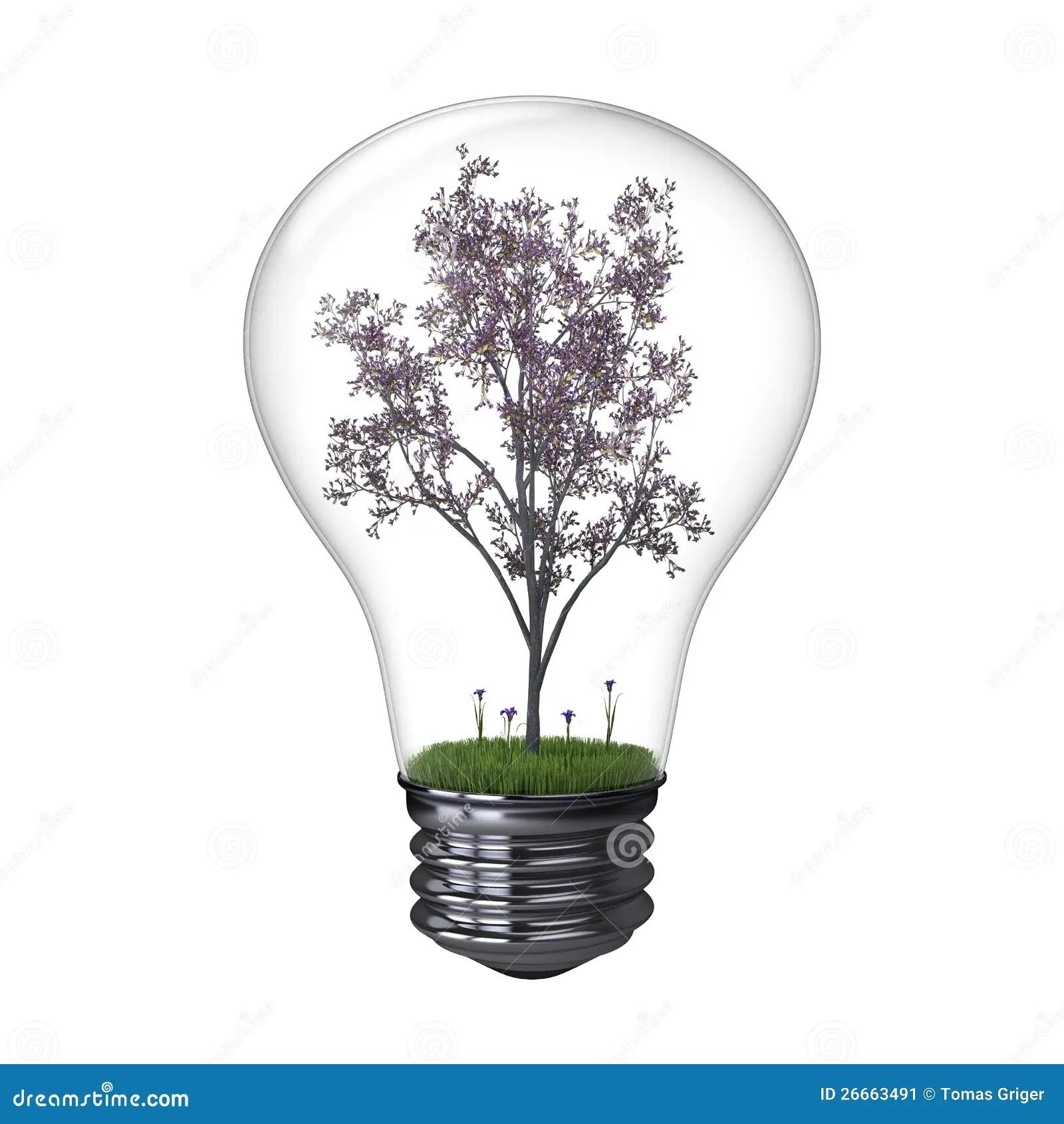 Blooming Tree Inside Lightbulb Stock Image