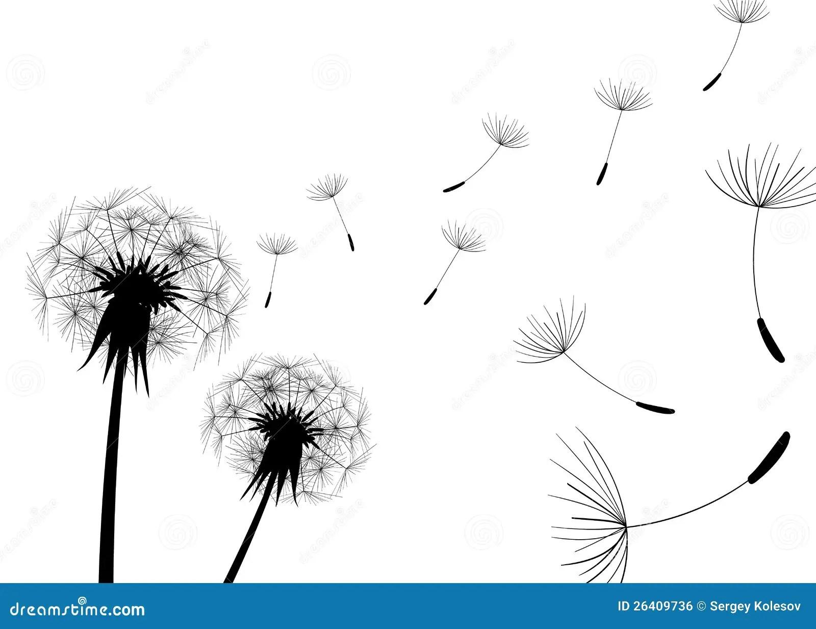 Blow Dandelion Vector Stock Vector Illustration Of