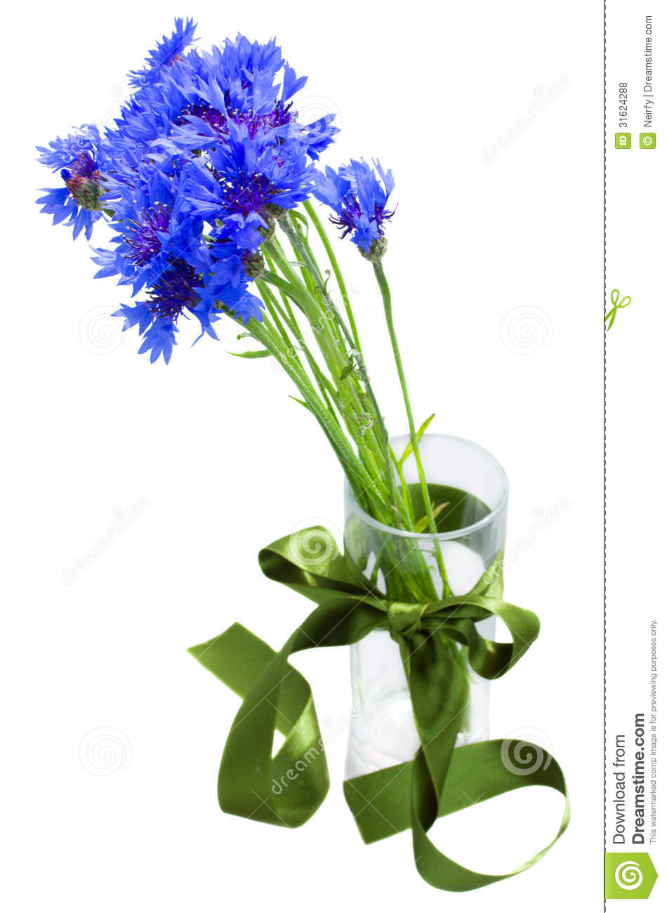 Blue Corn Flowers Bouquet In Vase Royalty Free Stock
