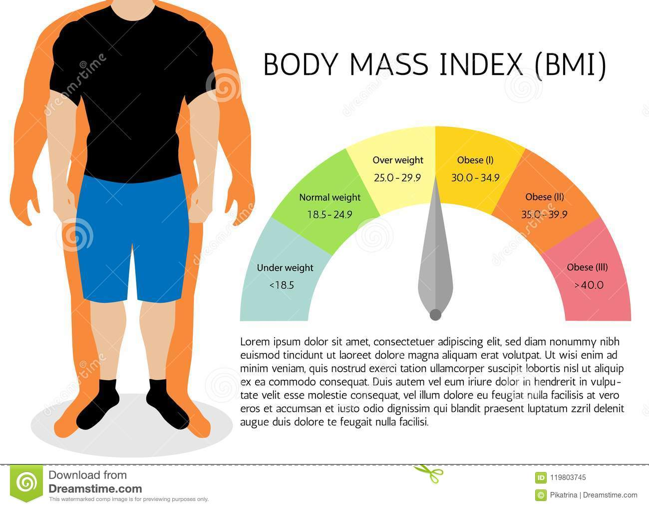 Body Mass Index Illustrationn Silhouettesle Body