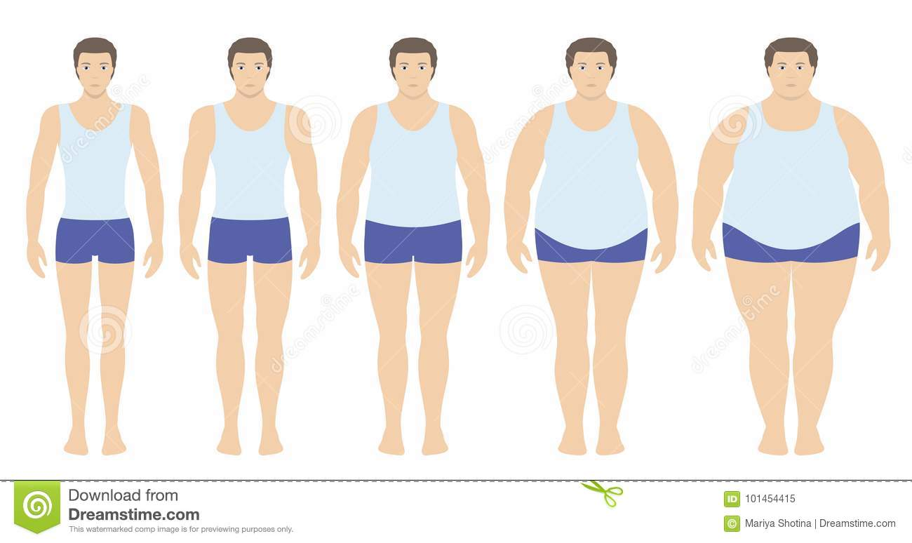 Body Mass Index Vector Illustration From Underweight To