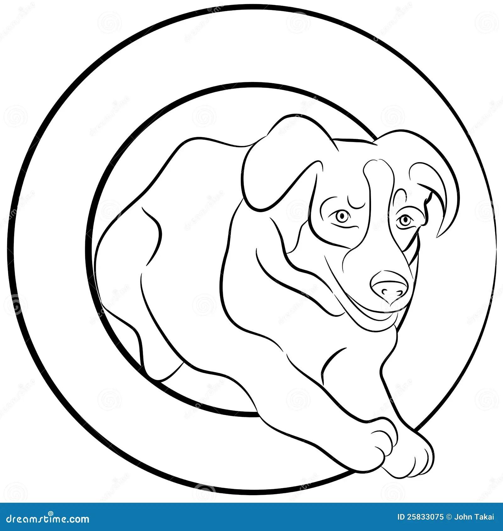 Border Collie Dog Jumping Through Hoop Stock Vector