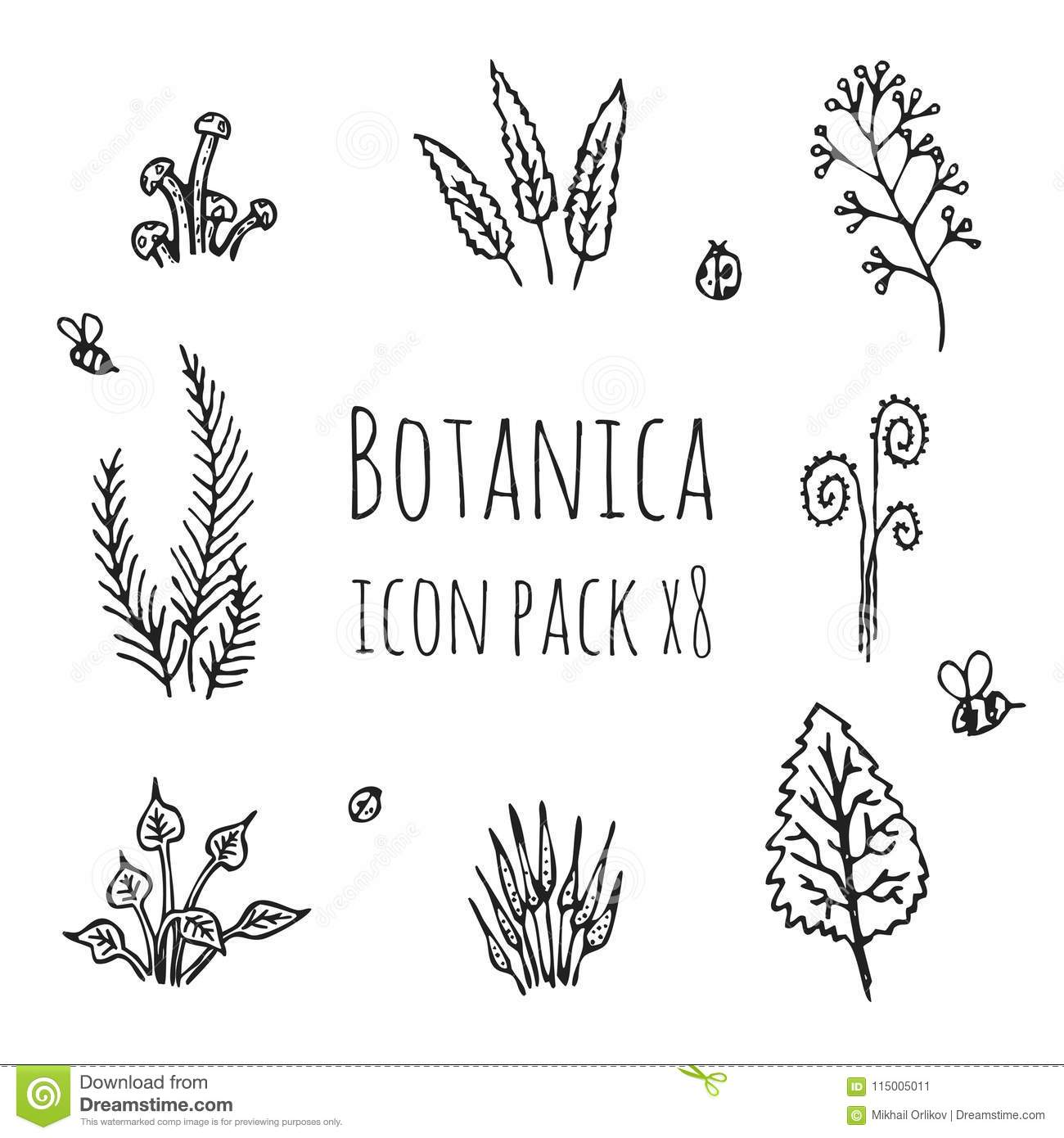 Plants Icons Set Vector Illustration