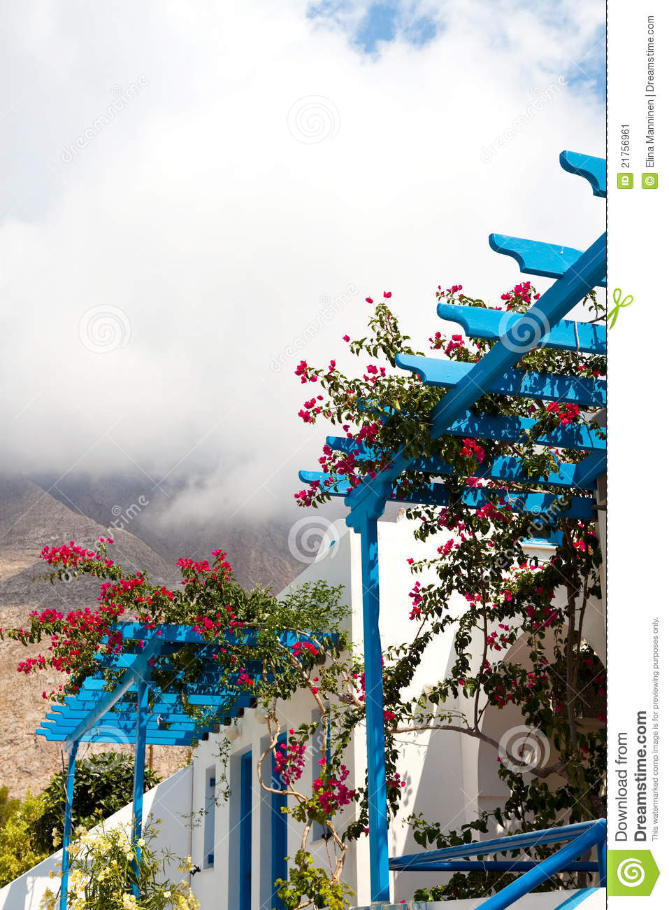 Bougainvillea Flowers Perissa Santorini Greece Stock