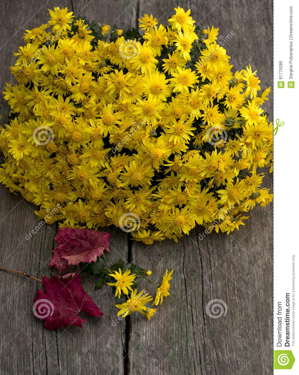 Bouquet Of Beautiful Yellow Flowers And Red Leaf Still