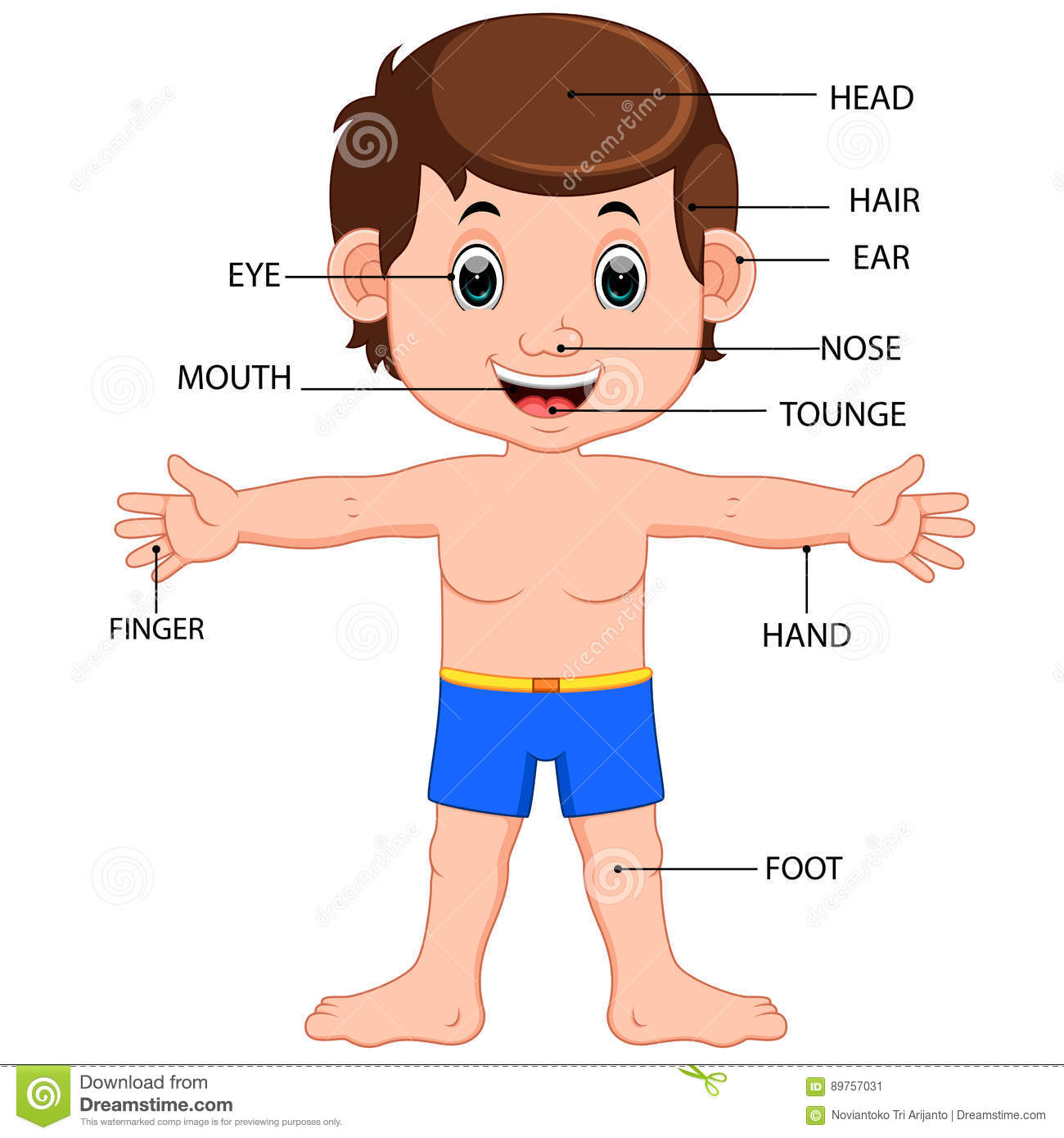 Boy Body Parts Diagram Poster Stock Vector