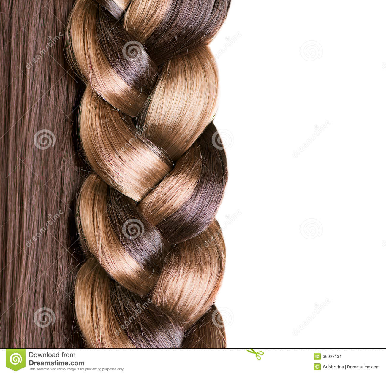 Braid Hairstyle Stock Image Image 36923131