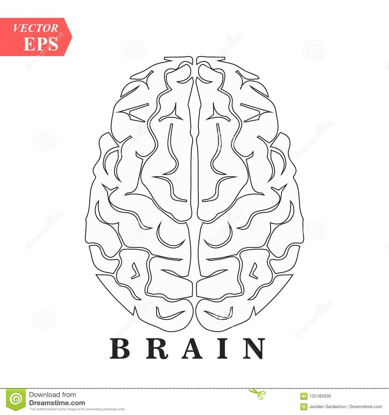 Brain Mind Or Intelligence Line Art Icon For Apps And