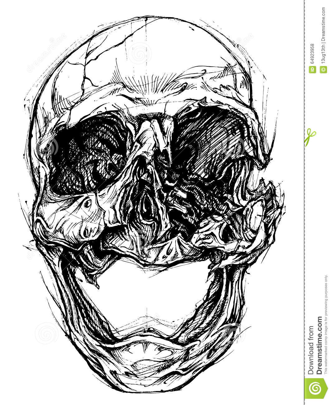 Skull Drawing Line Work Vector Vector Illustration