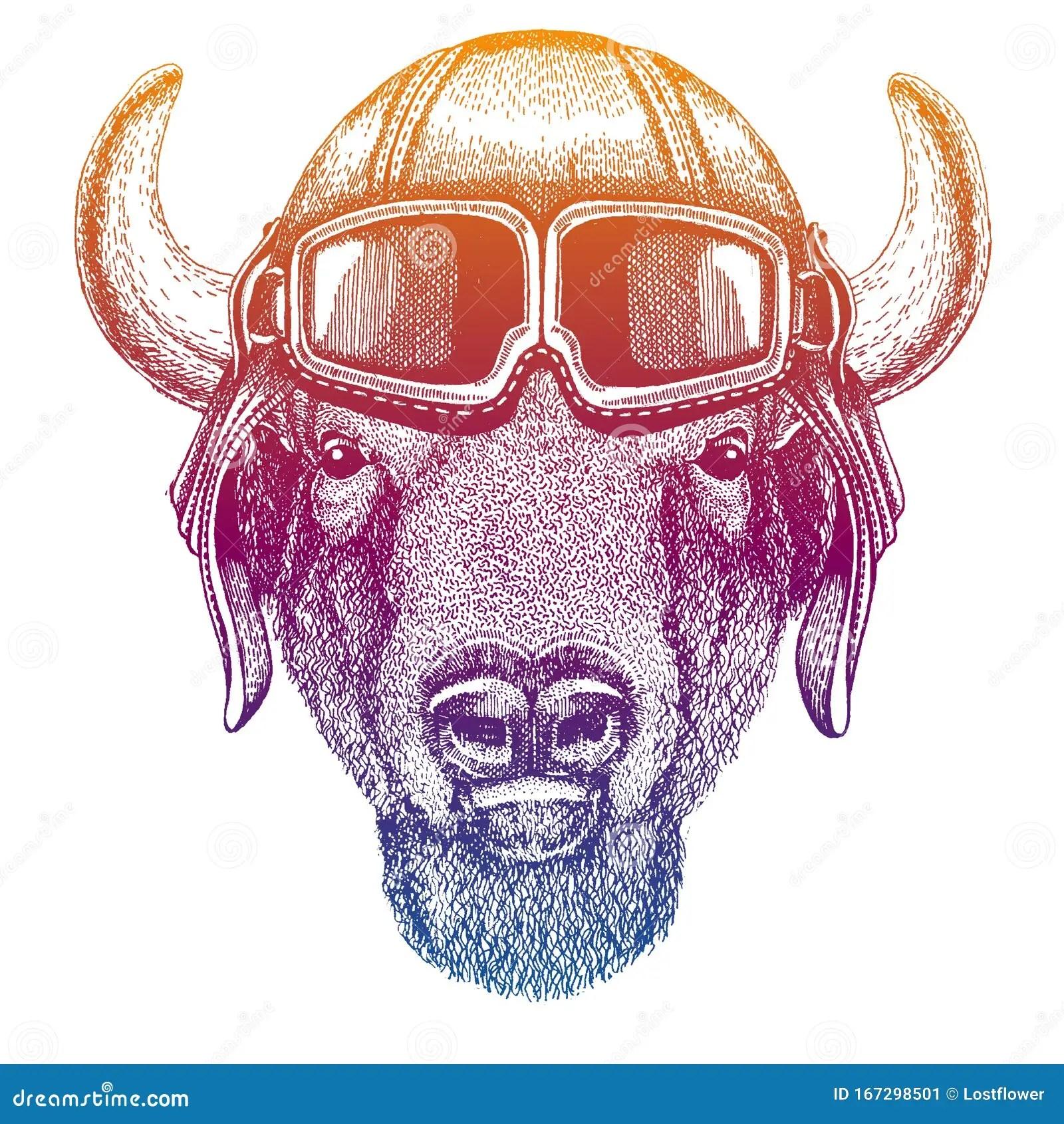 Buffalo Bison Ox Bull Wild Animal Vector Fashion