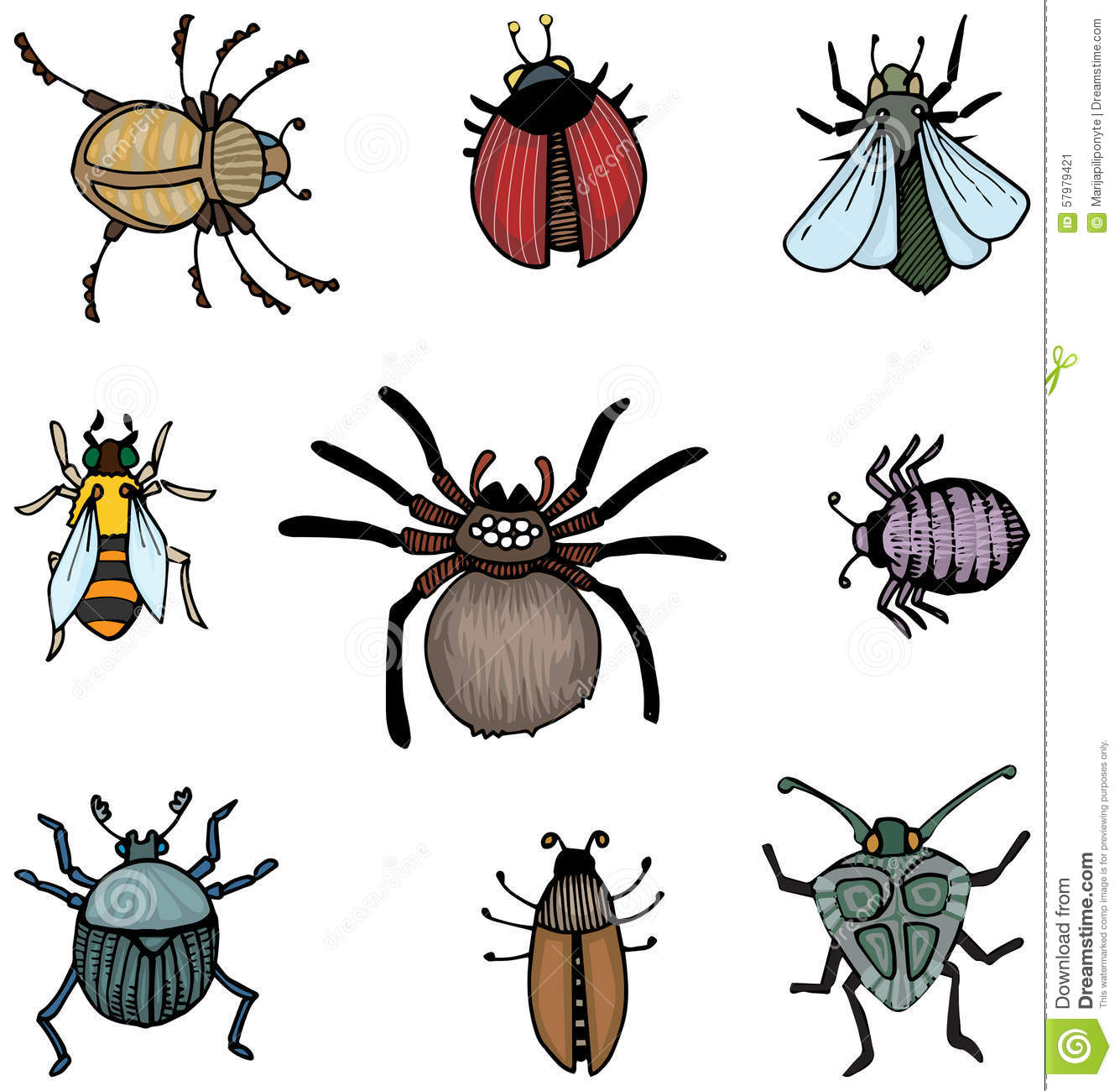 Bugs And Insects Stock Vector Illustration Of Insects
