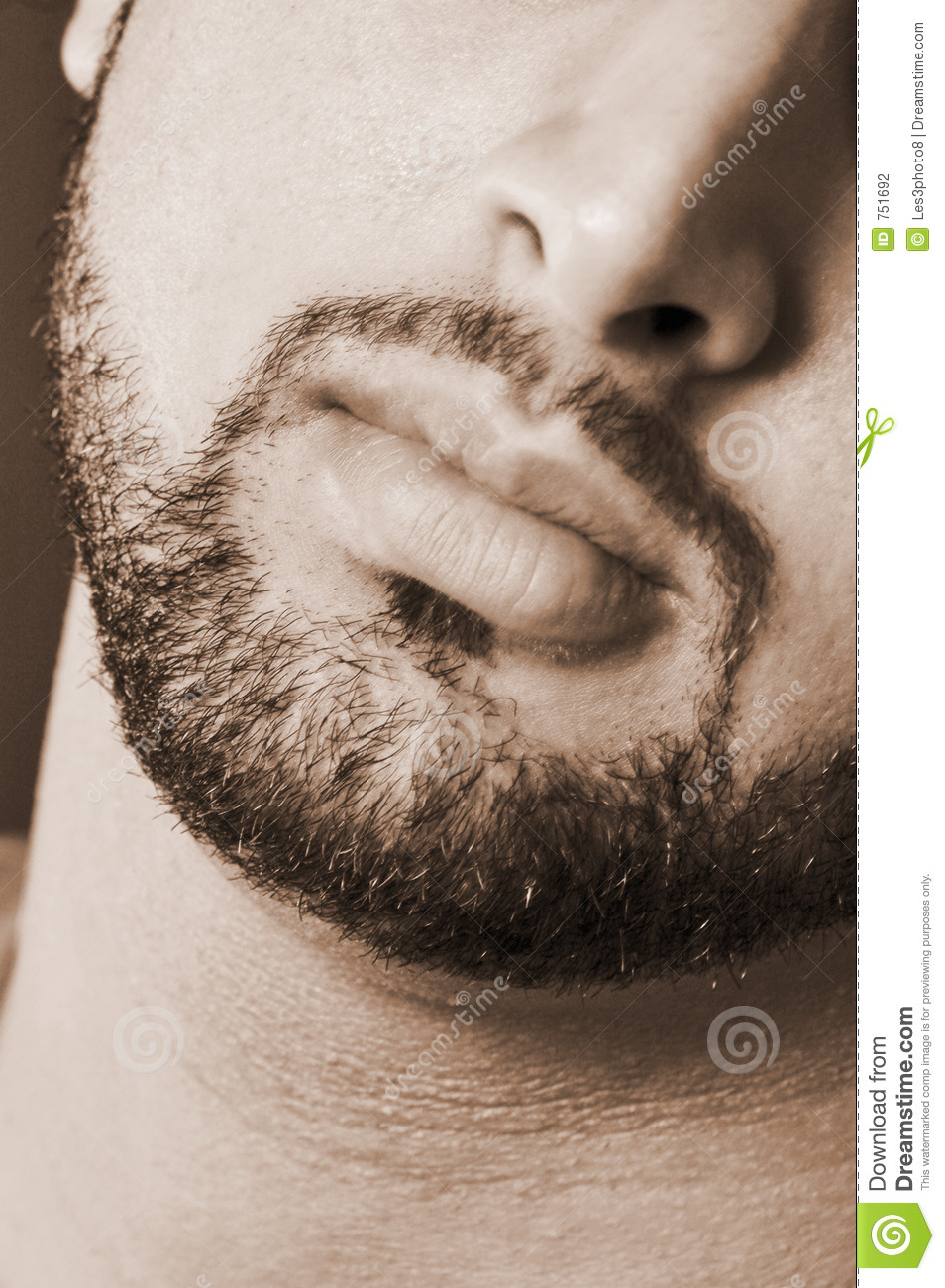 Burly Male Beard Stock Photography Image 751692