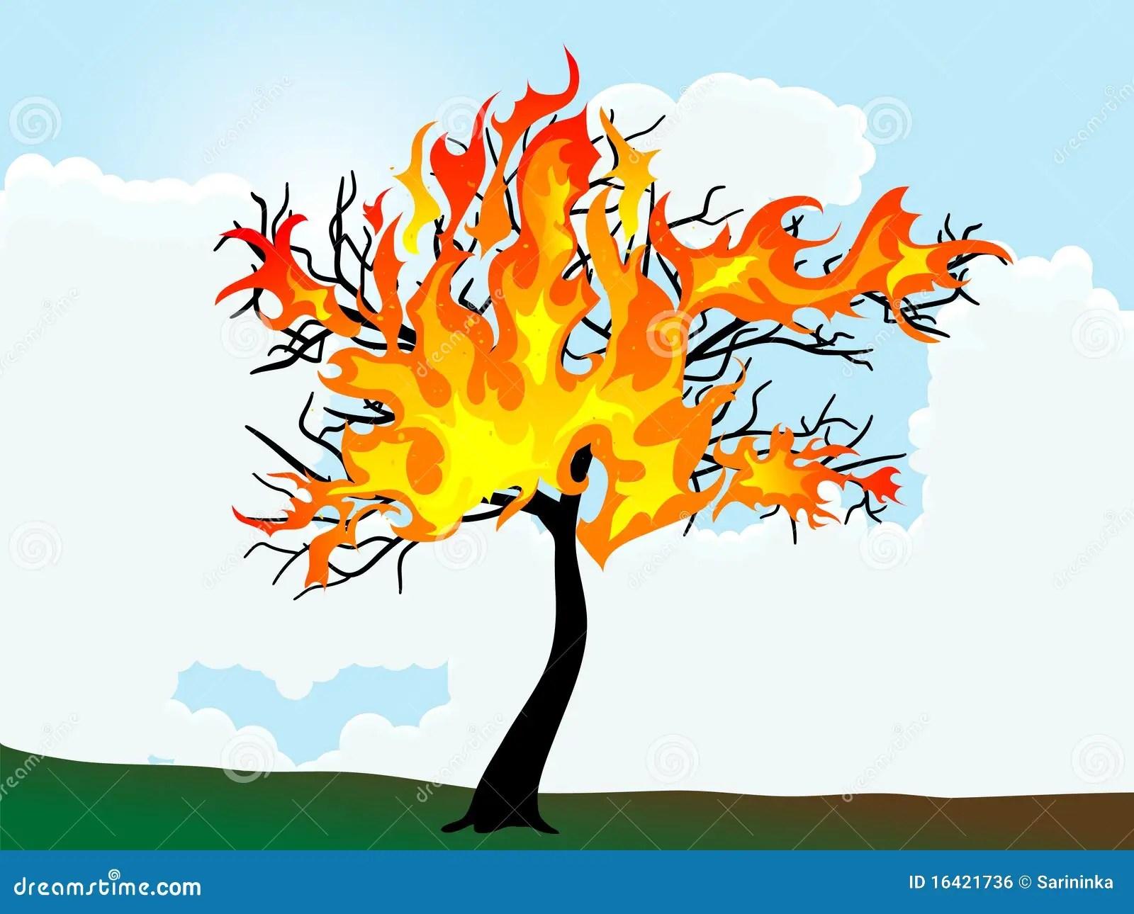 Burning Tree Royalty Free Stock Image Image 16421736