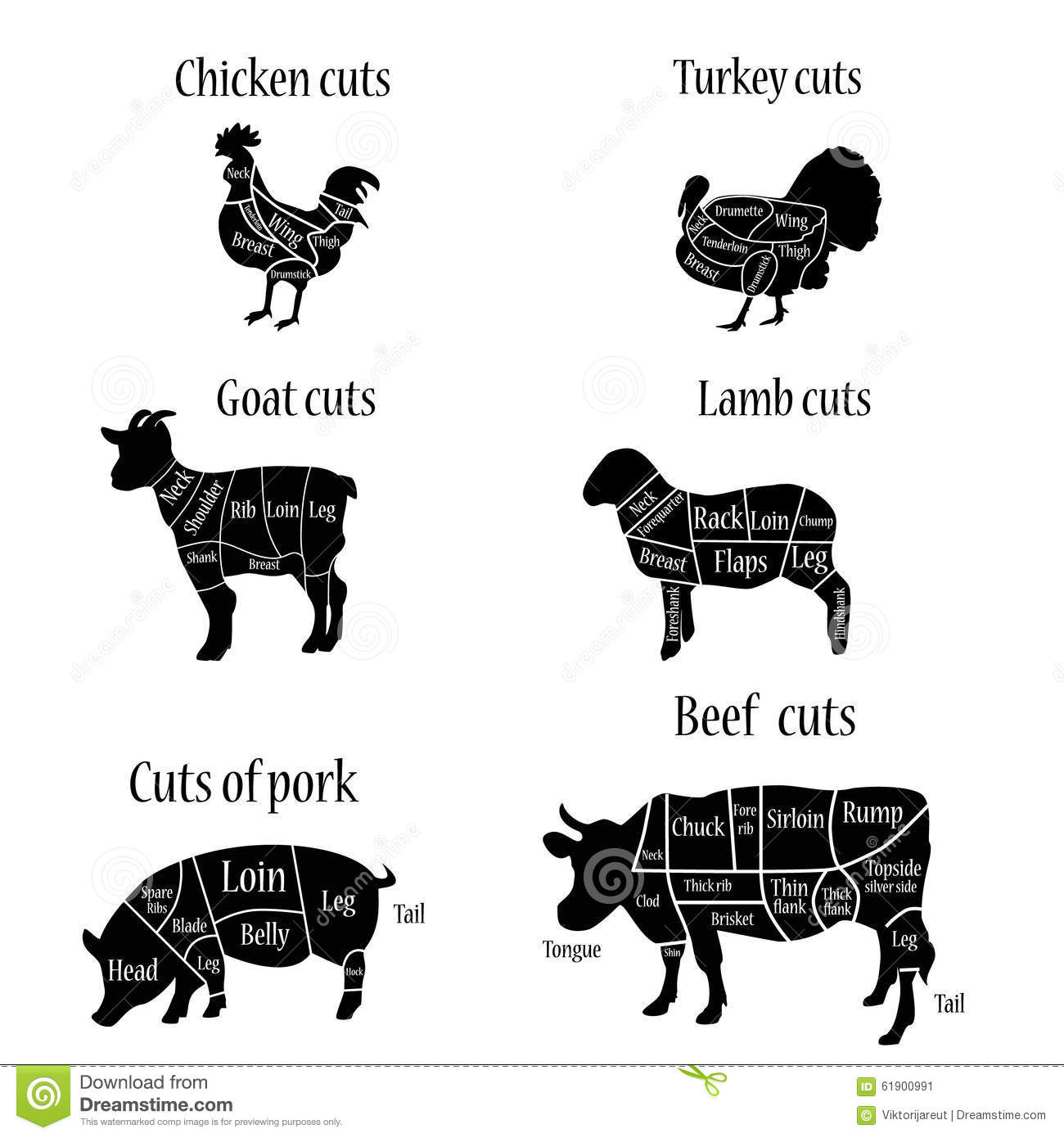Butcher Chart Stock Illustration