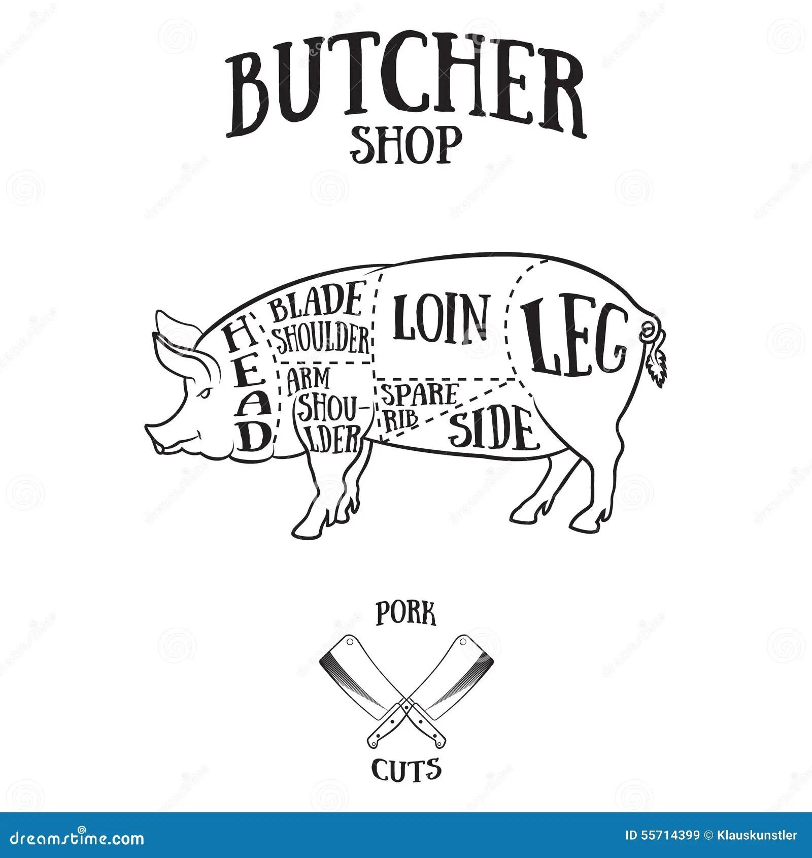 Butcher Cuts Scheme Of Pork Stock Vector