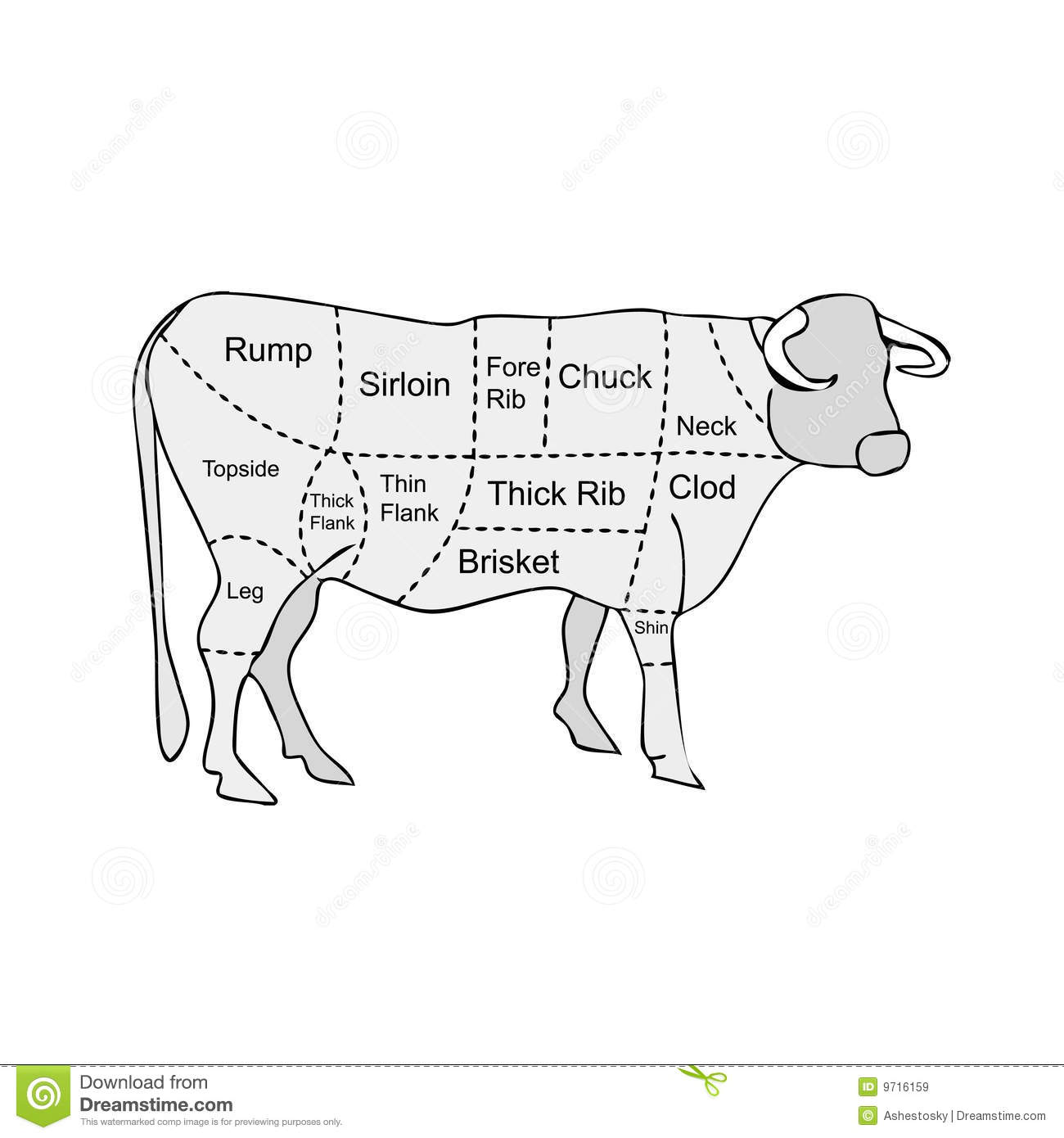 Butcher Meat Sections Of Cow Royalty Free Stock Images