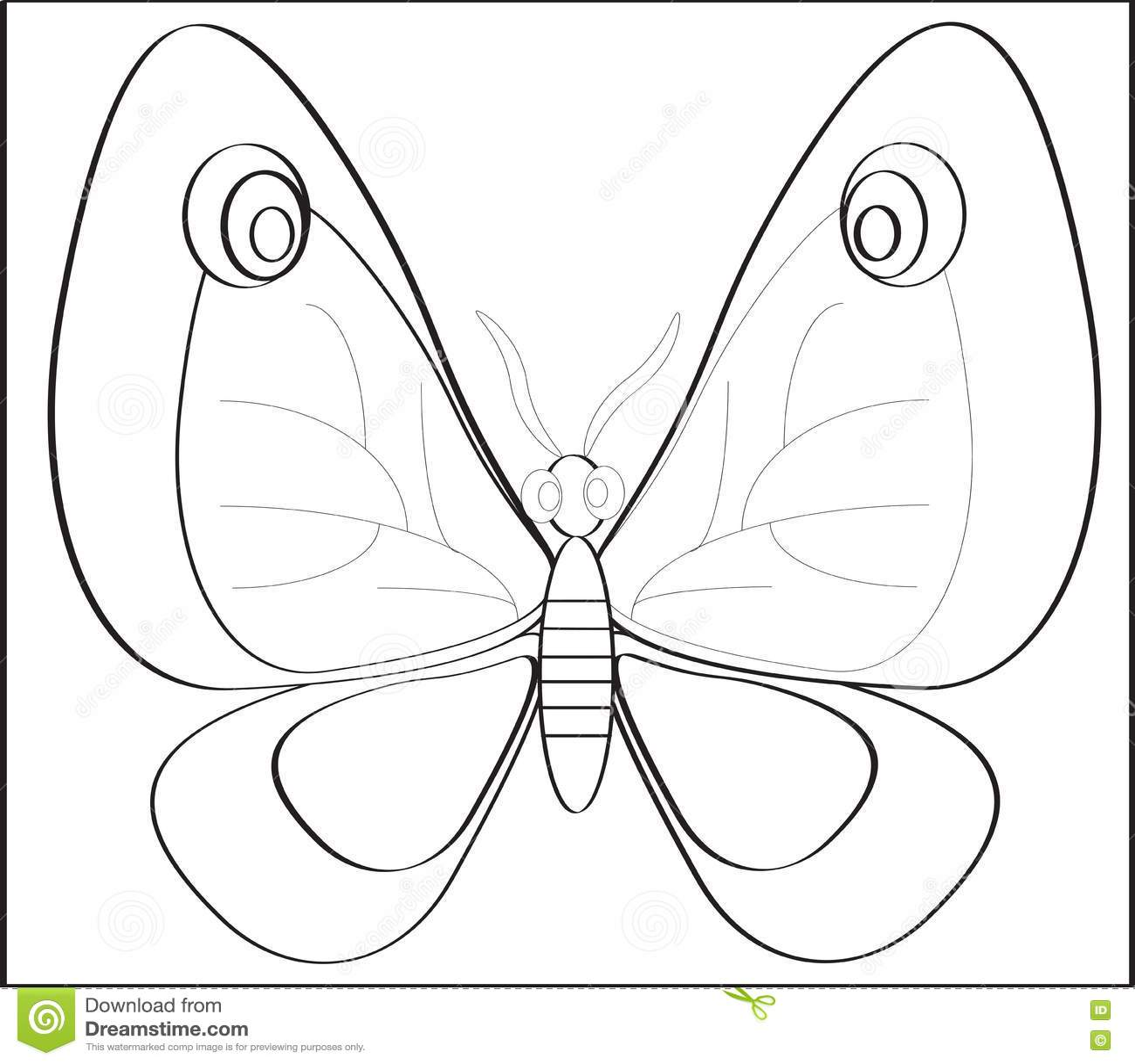 Butterfly Stock Illustration Illustration Of Spring