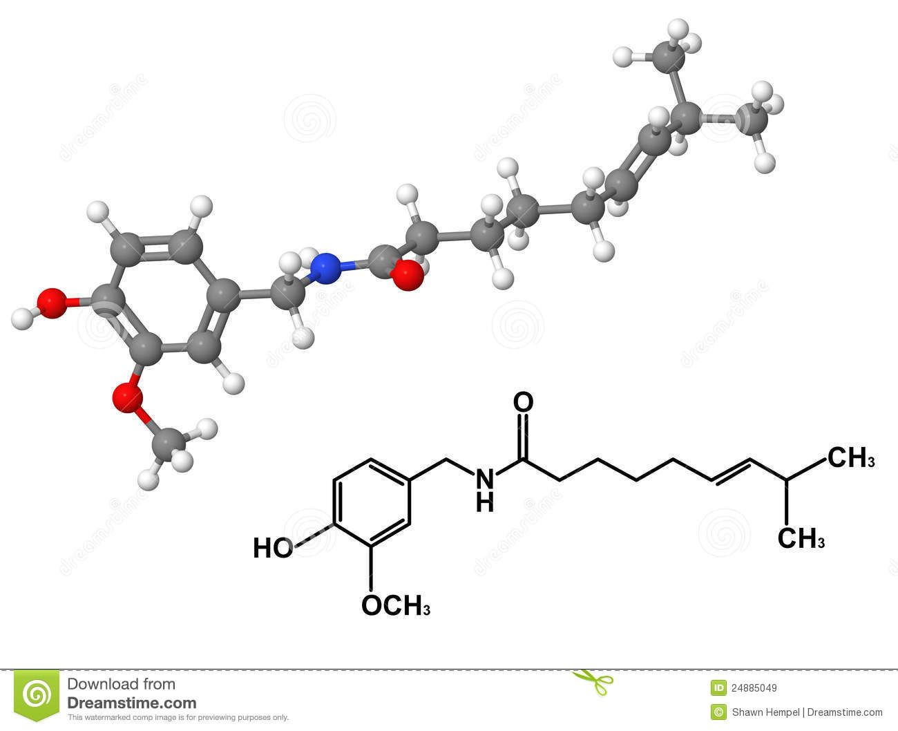 Capsaicin Molecule With Chemical Formula Royalty Free Stock Images
