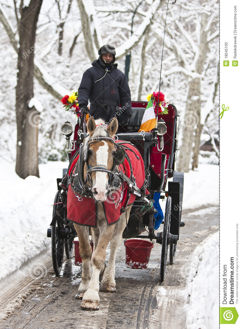 Carriage Ride In Winter Editorial Image Image 18045100