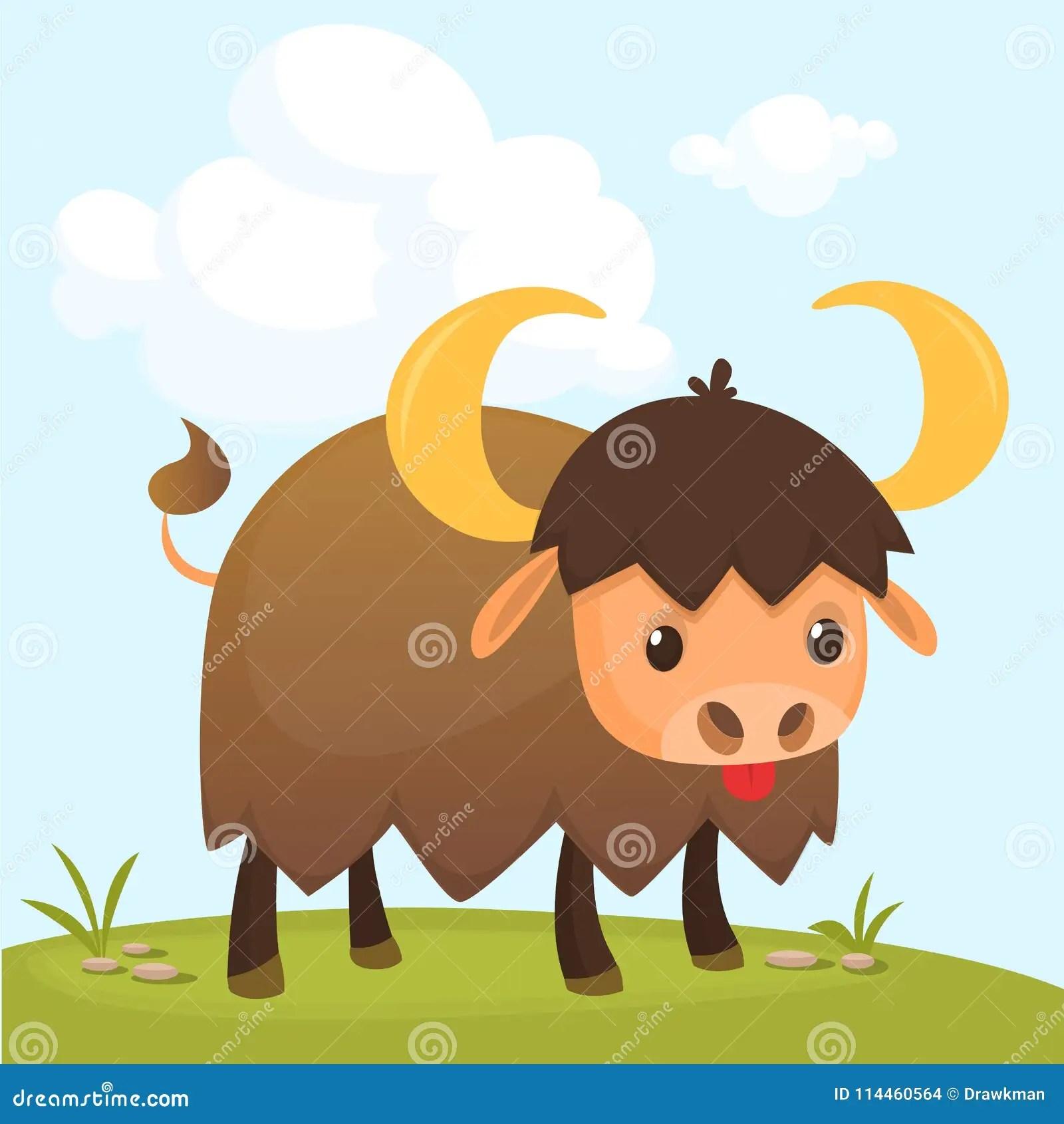 Cartoon American Bull Buffalo Ox Bison Gazing On Meadow
